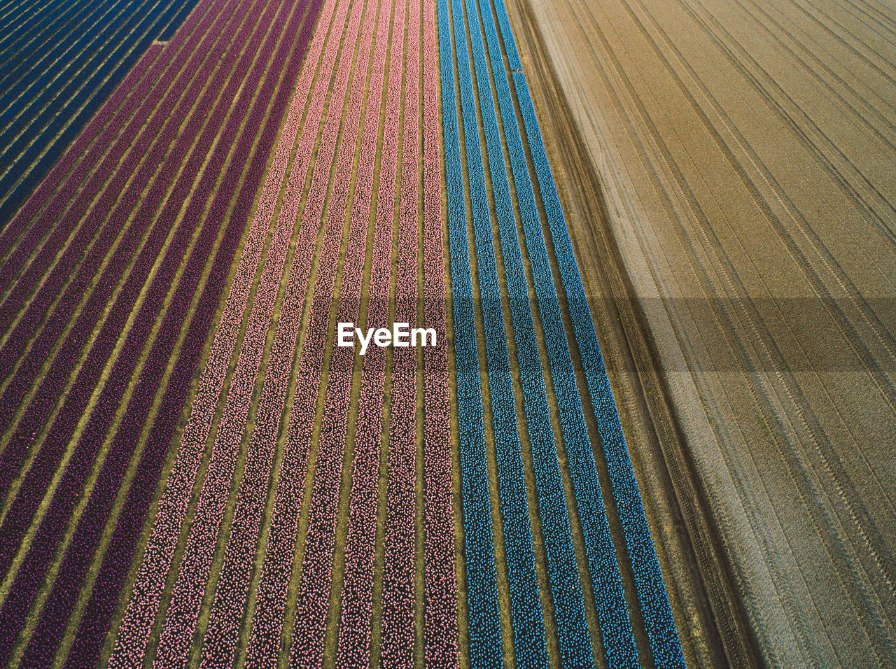 pattern, full frame, backgrounds, no people, high angle view, multi colored, day, textile, outdoors, close-up, textured, design, carpet - decor, flooring, striped, transportation, nature, creativity, sunlight