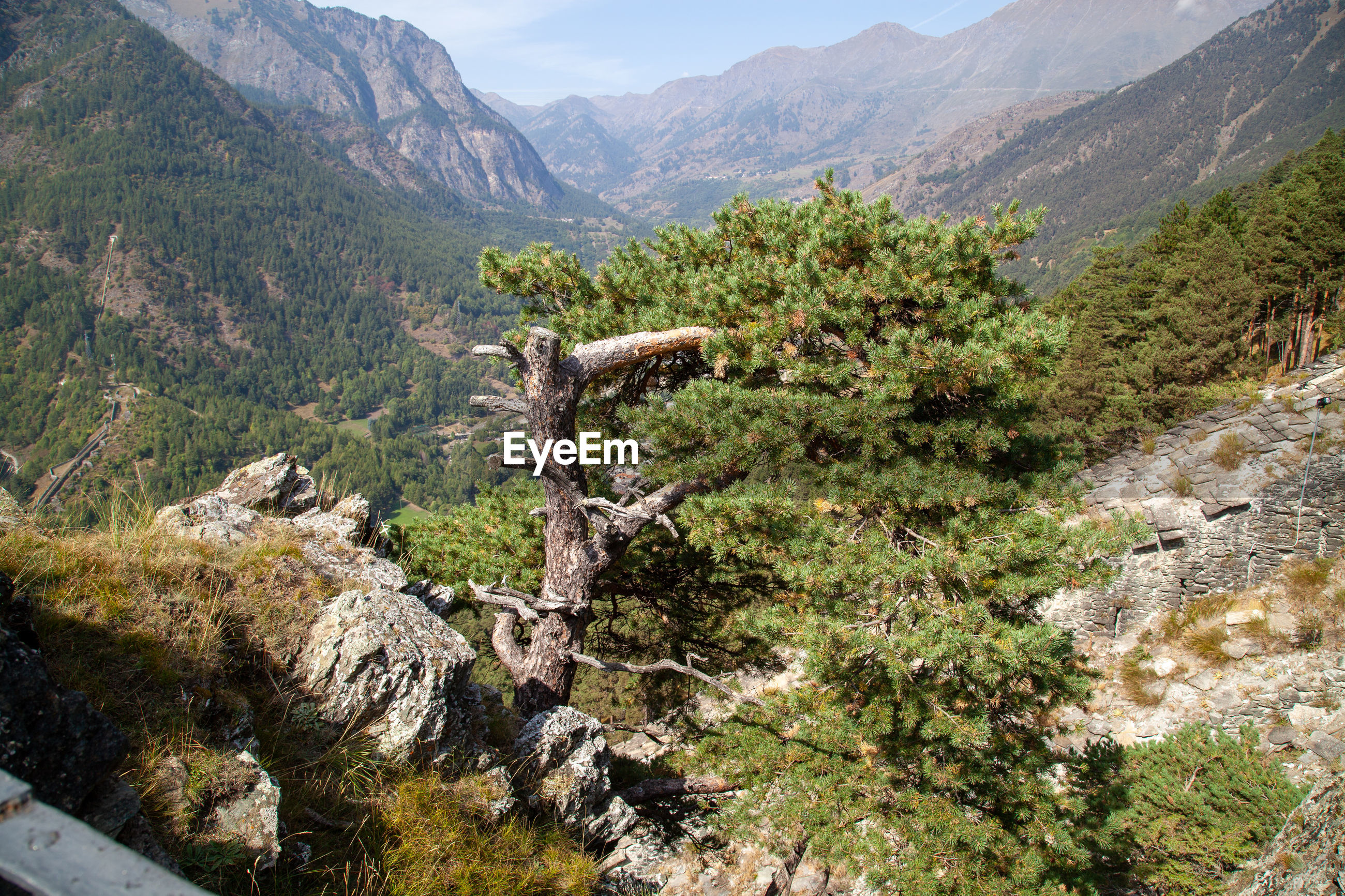 Scenic view of landscape and mountains