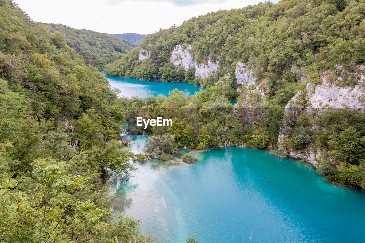 water, scenics - nature, plant, tree, tranquil scene, tranquility, beauty in nature, nature, river, day, no people, high angle view, non-urban scene, mountain, land, outdoors, environment, idyllic, turquoise colored