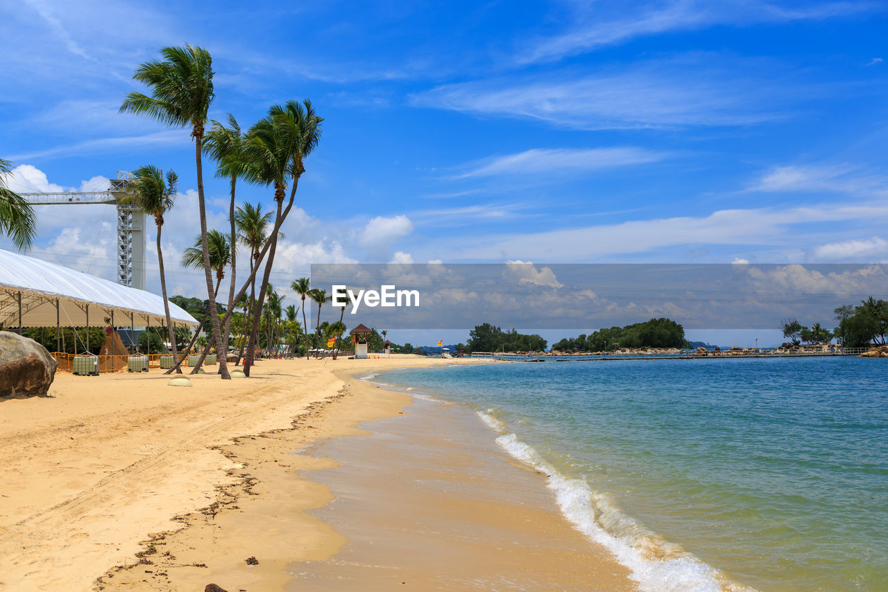 beach, sea, sand, sky, nature, water, palm tree, tranquil scene, scenics, tree, cloud - sky, beauty in nature, no people, outdoors, day