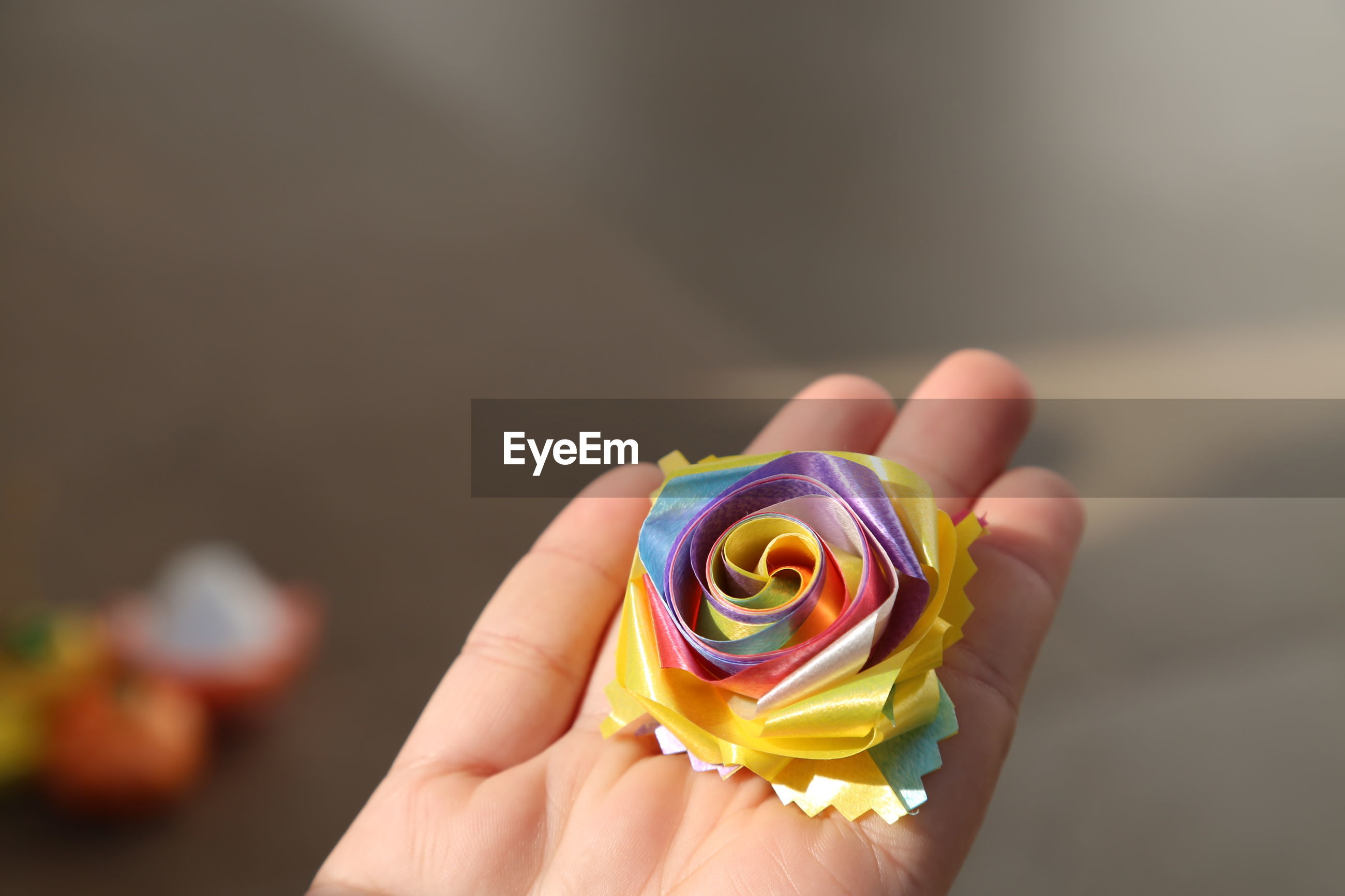 Close-up of hand holding colorful floral pattern