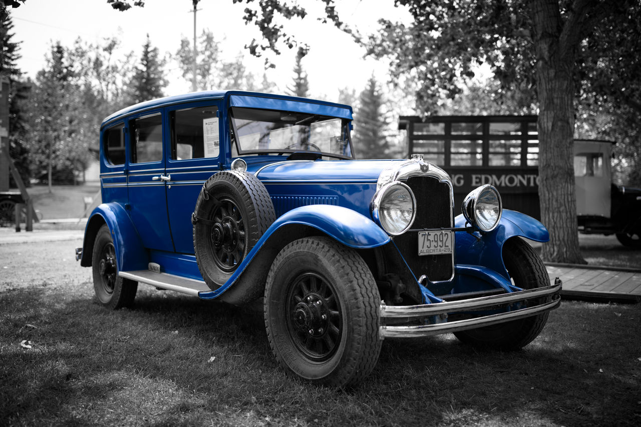 mode of transportation, transportation, land vehicle, motor vehicle, car, blue, tree, day, retro styled, stationary, no people, city, architecture, travel, plant, nature, road, building exterior, vintage car, wheel