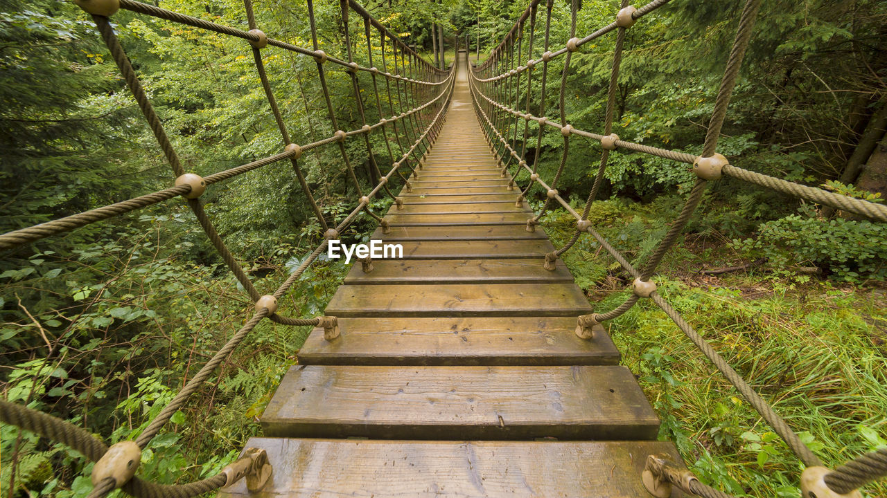 direction, forest, rope bridge, tree, connection, the way forward, land, plant, bridge, wood - material, nature, rope, tranquility, footbridge, tranquil scene, day, bridge - man made structure, built structure, diminishing perspective, architecture, outdoors, no people