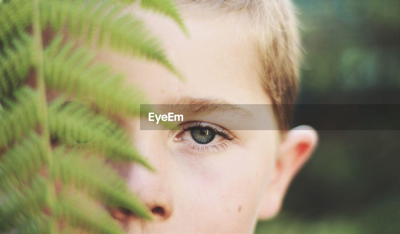 Close-up portrait of boy by fern
