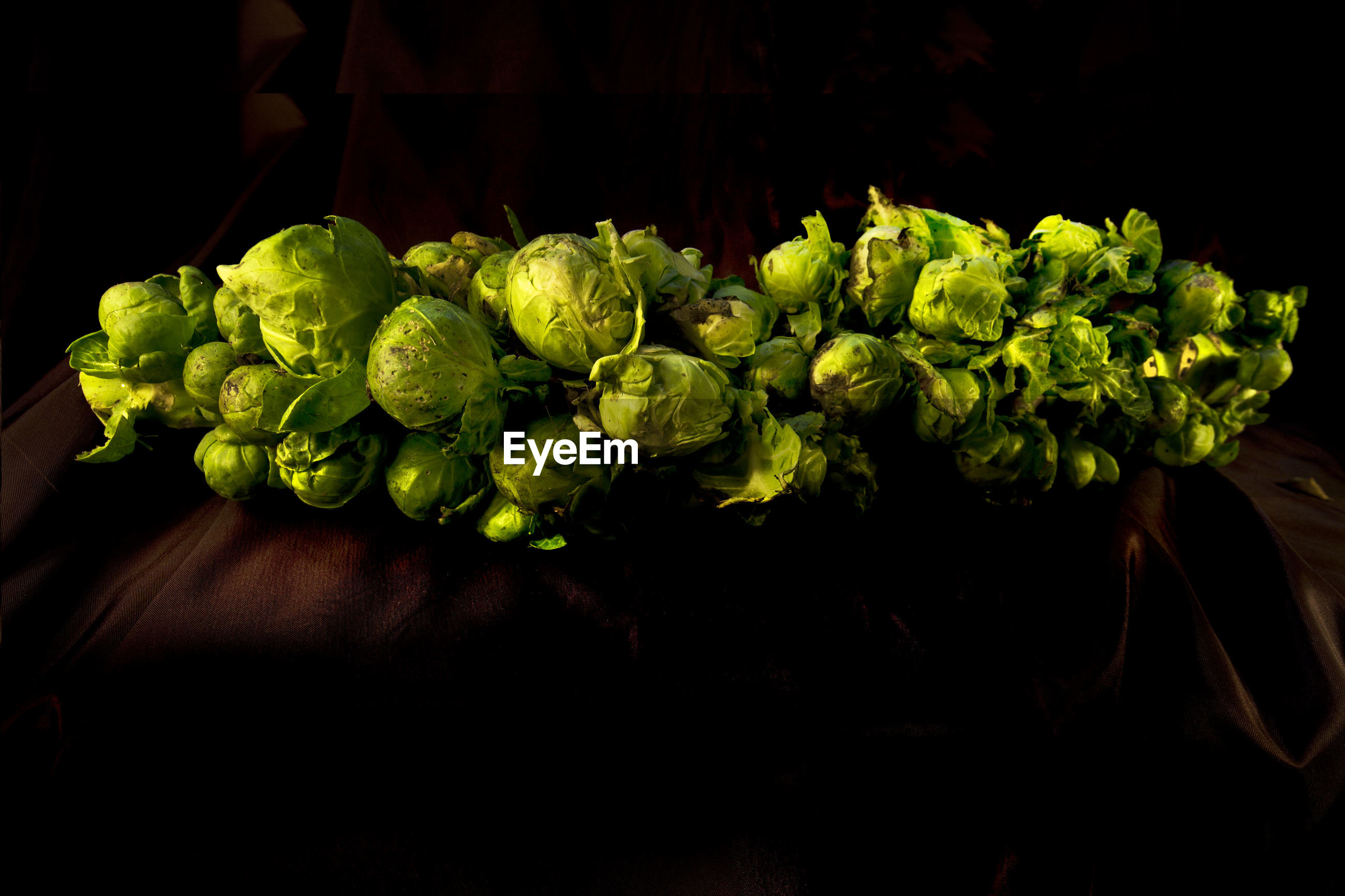 High angle view of brussels sprouts
