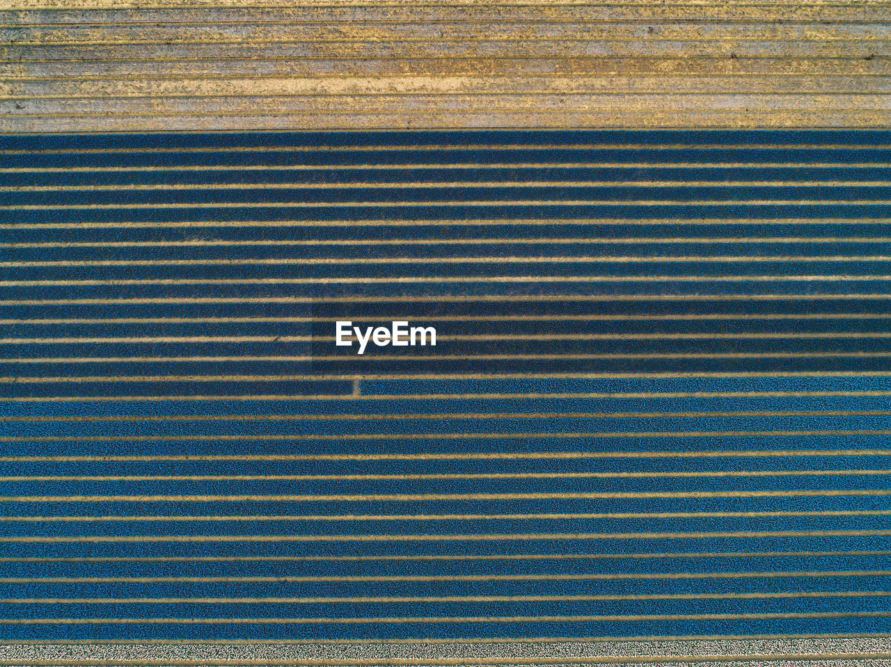 pattern, full frame, no people, backgrounds, striped, day, repetition, textured, outdoors, high angle view, close-up, metal, nature, wall - building feature, architecture, blue, wood - material, yellow, directly above, parallel