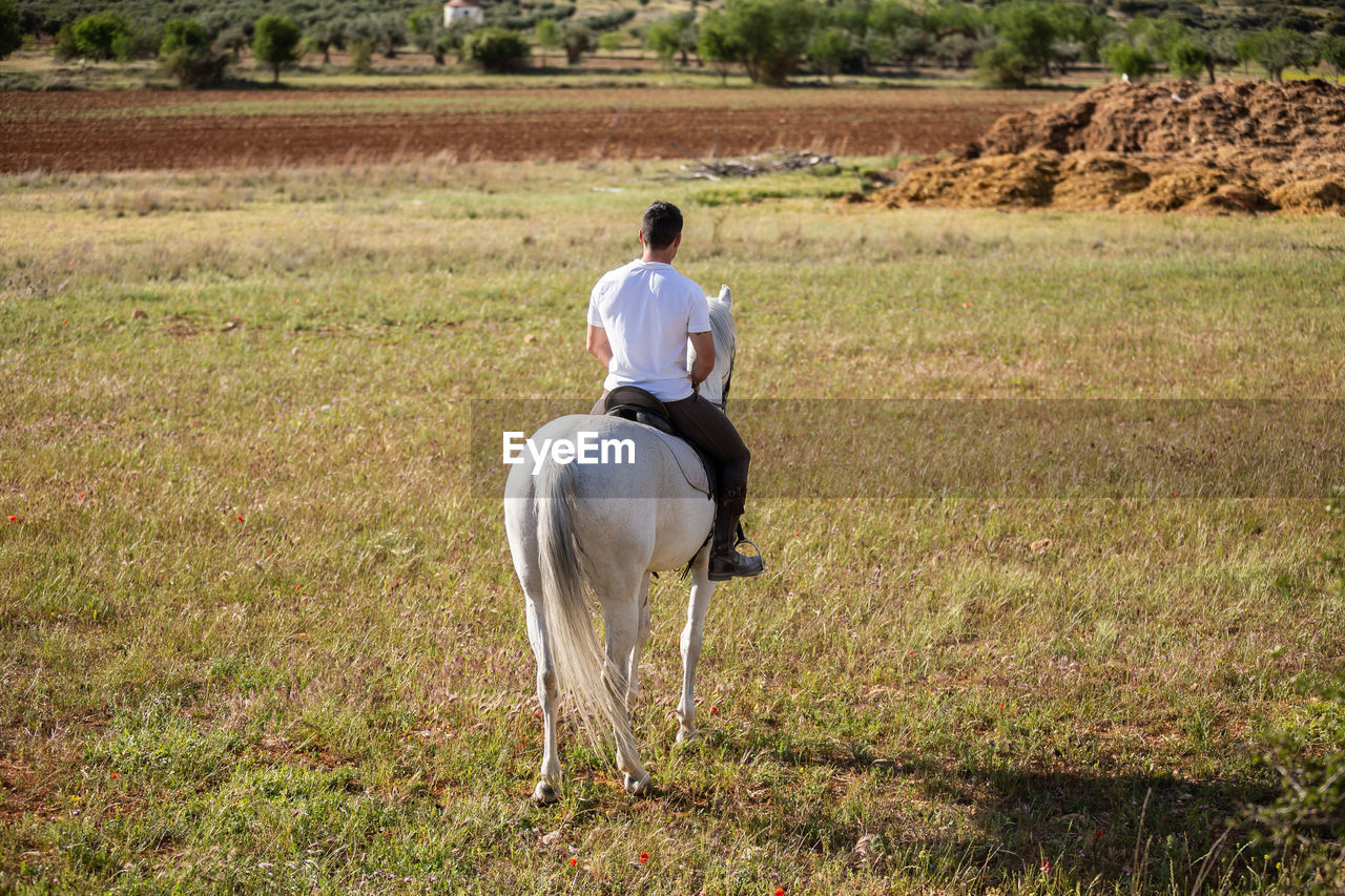 REAR VIEW OF PERSON RIDING HORSE