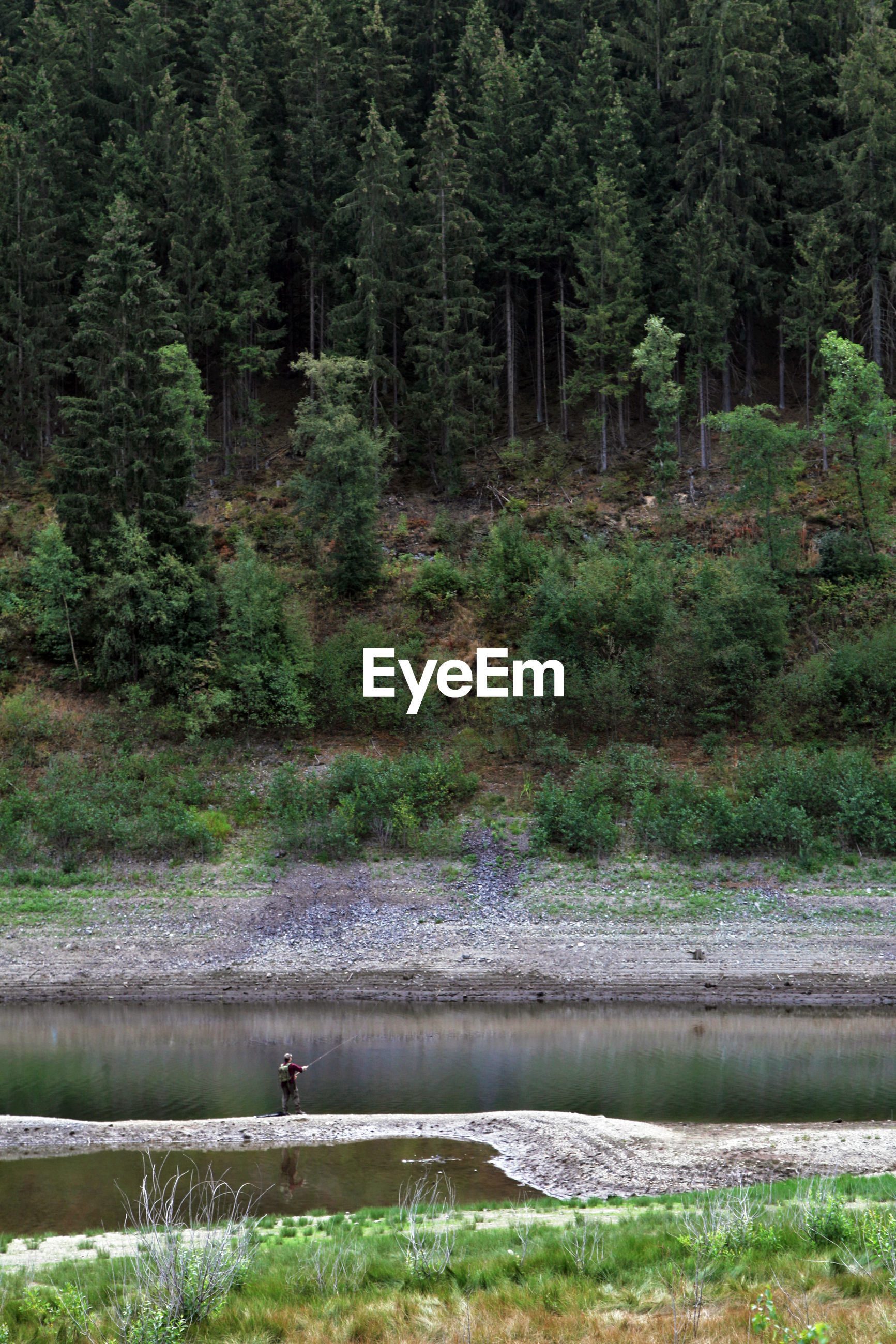 View of a fisherman in front of stream amidst trees in forest