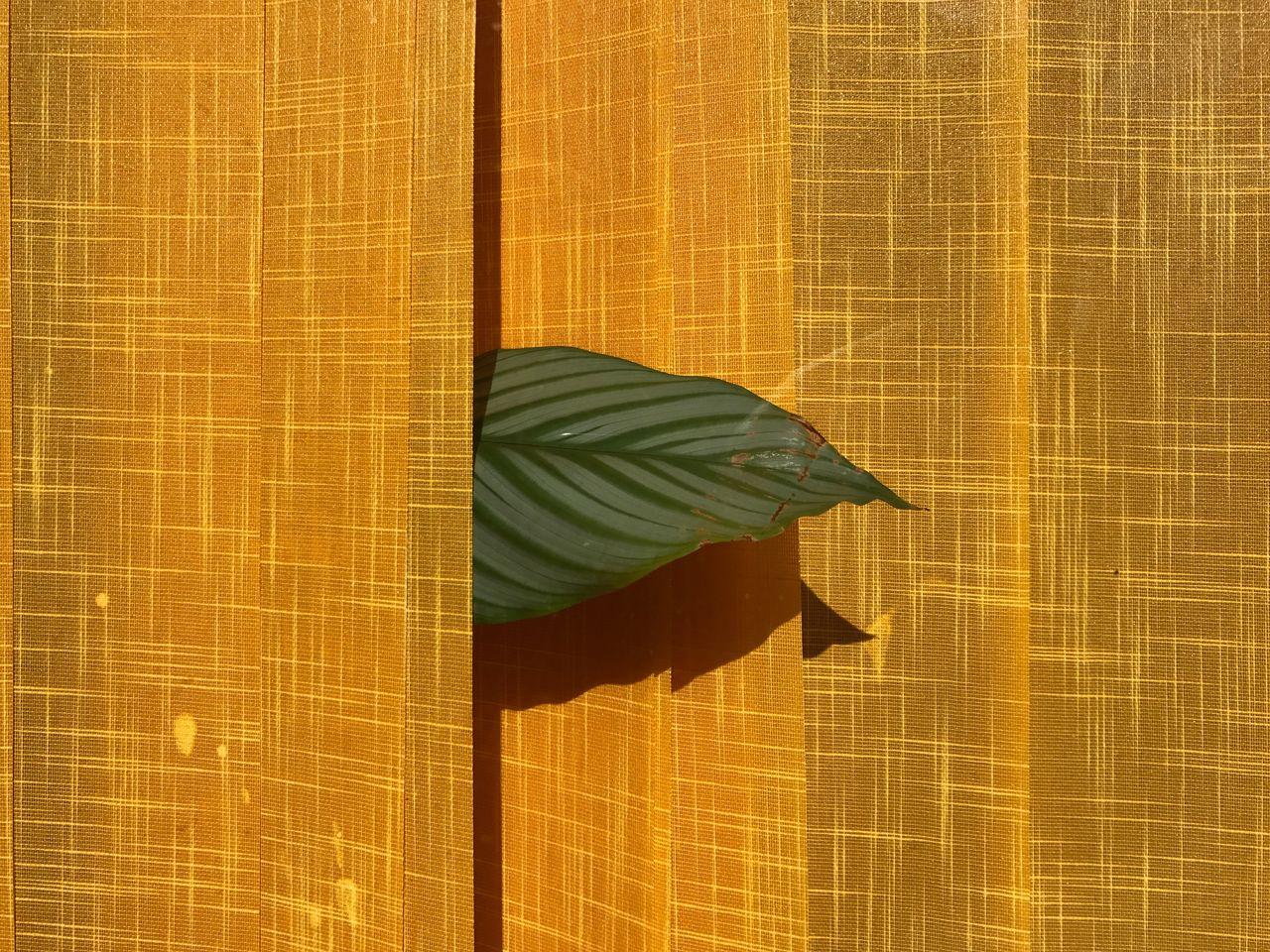 Close-Up Of Orange Curtain