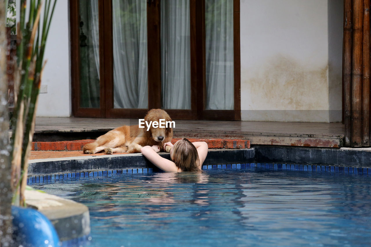 Rear View Of Woman Swimming In Pool By Dog