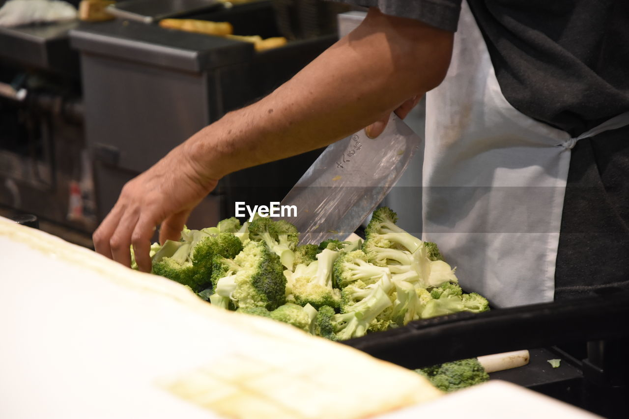 High angle view of person colleting broccoli in container
