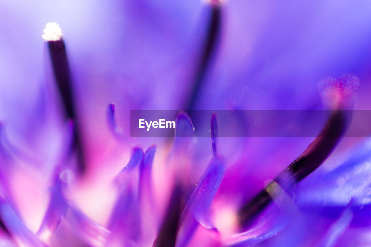 selective focus, purple, close-up, indoors, no people, technology, day