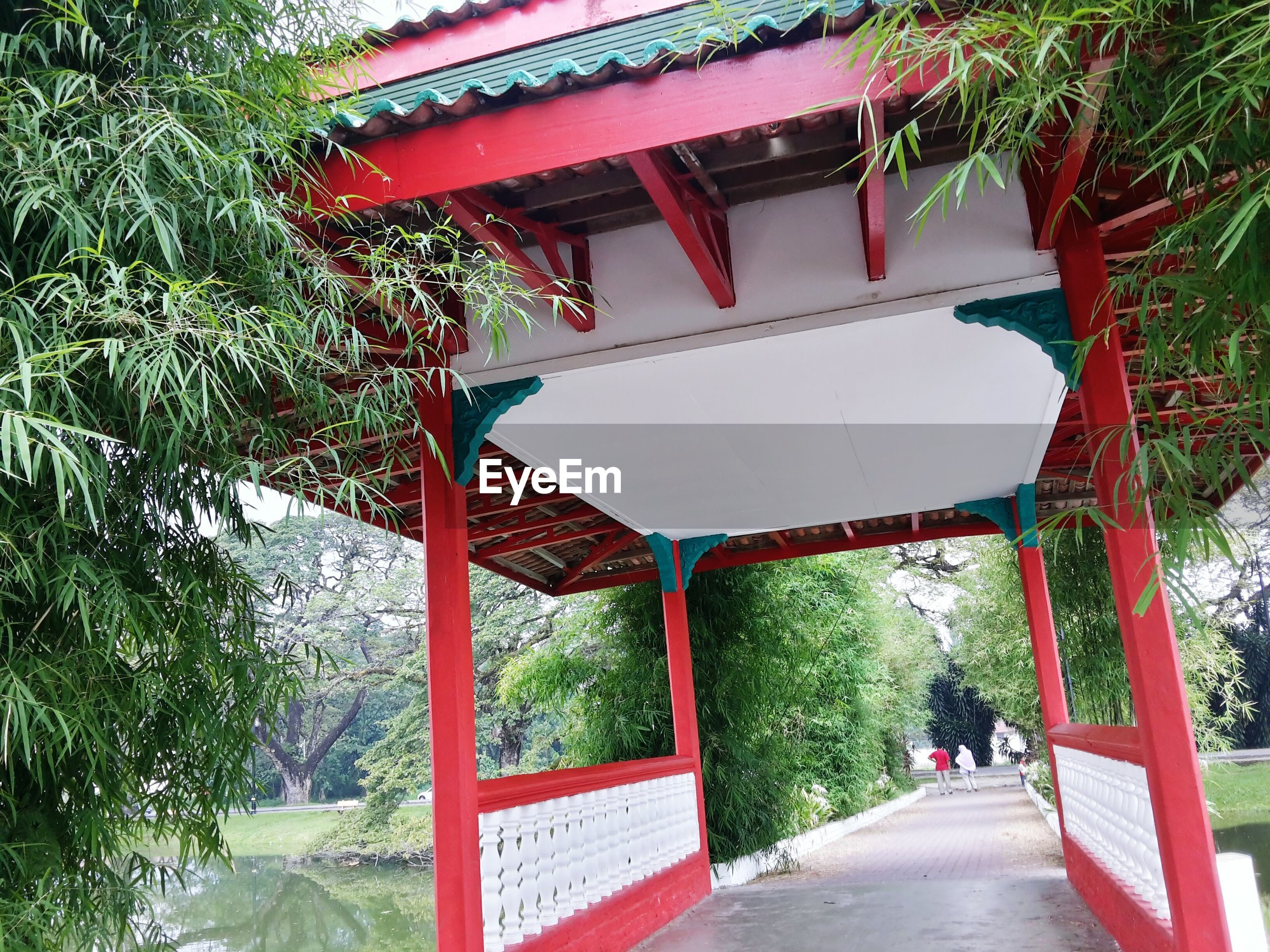 tree, built structure, architecture, red, text, building exterior, person, incidental people, entrance, the way forward, outdoors, tradition, non-western script, day, street, gate, railing, footpath, lifestyles