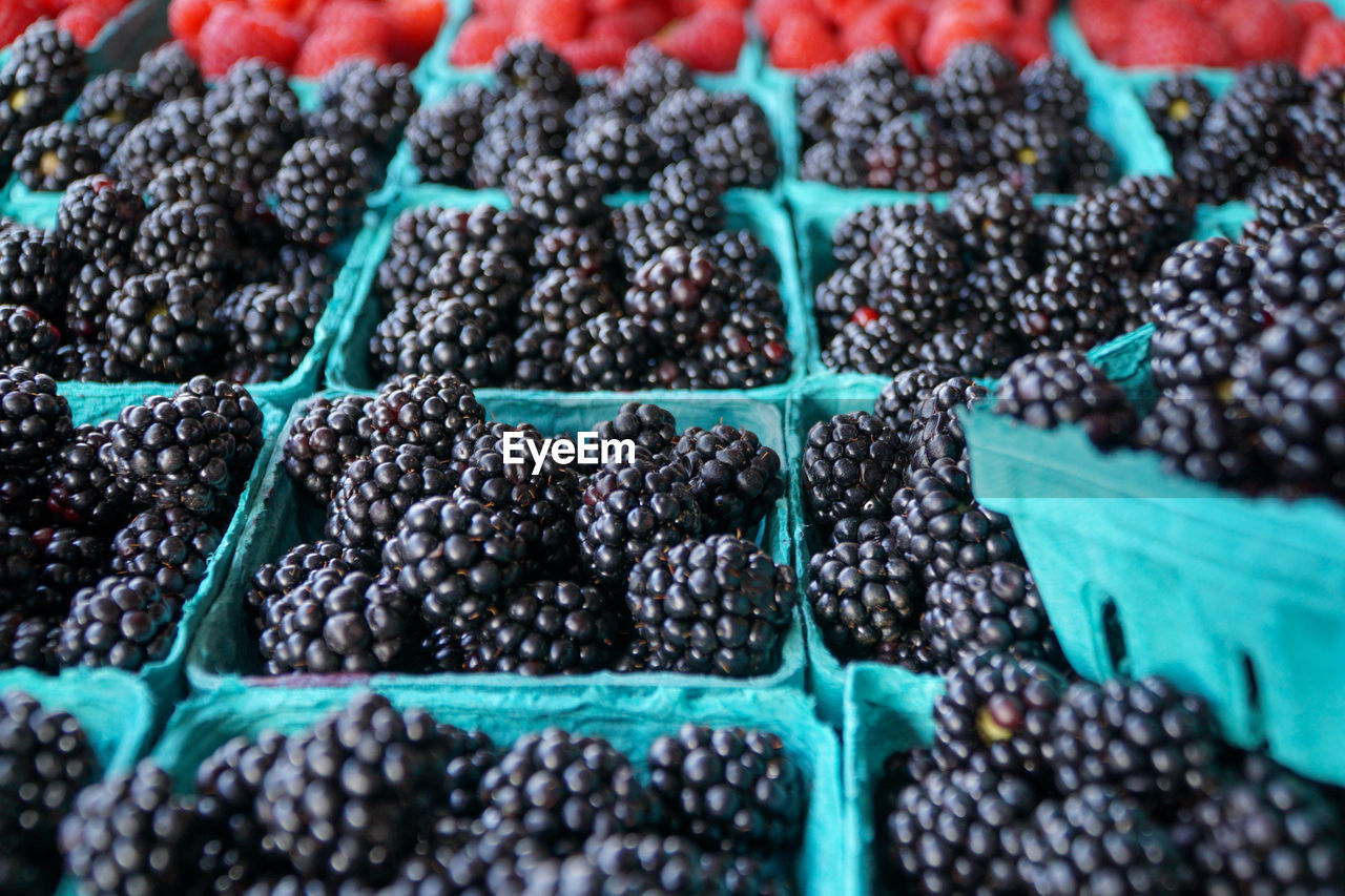 food, food and drink, blackberry - fruit, freshness, healthy eating, fruit, berry fruit, large group of objects, wellbeing, market, retail, abundance, blueberry, no people, for sale, full frame, container, choice, market stall, black color, carton, ripe