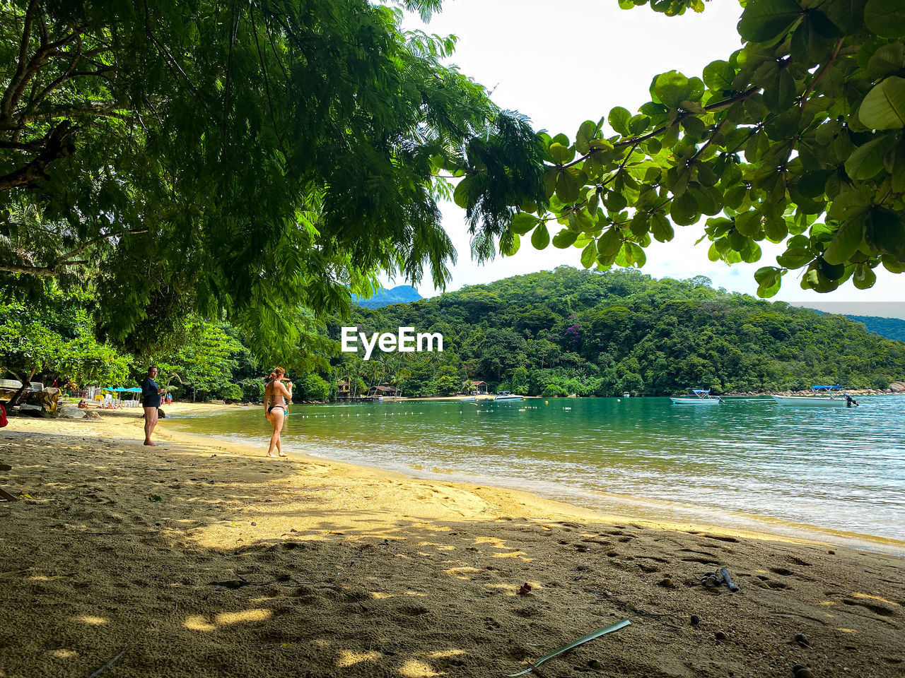 PEOPLE ON BEACH AGAINST TREES