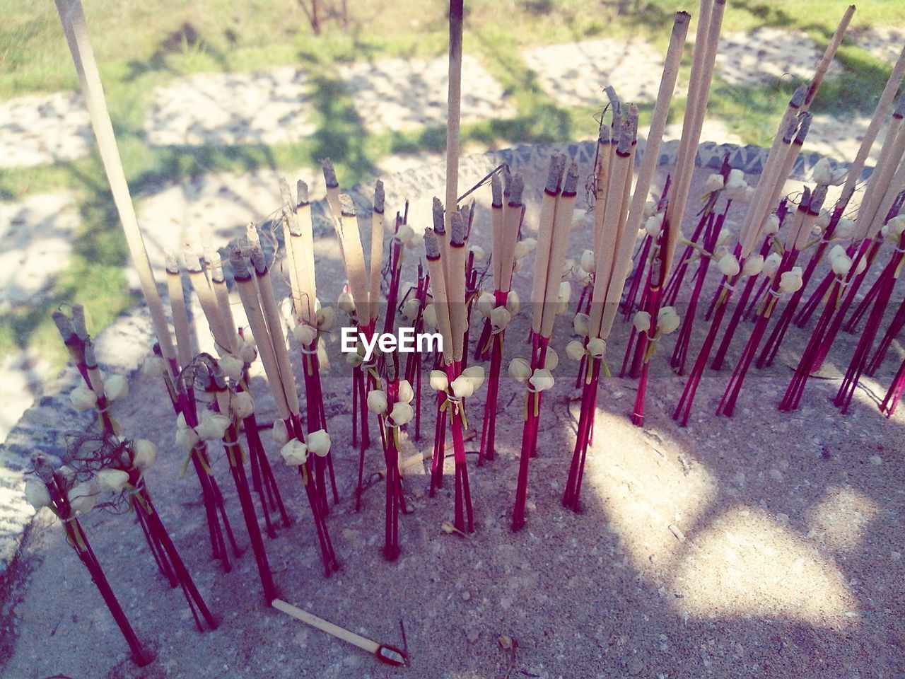 incense, religion, spirituality, belief, nature, no people, day, sunlight, large group of objects, outdoors, field, land, place of worship, ash, shadow, hope, burning, scented, stick - plant part, religious equipment