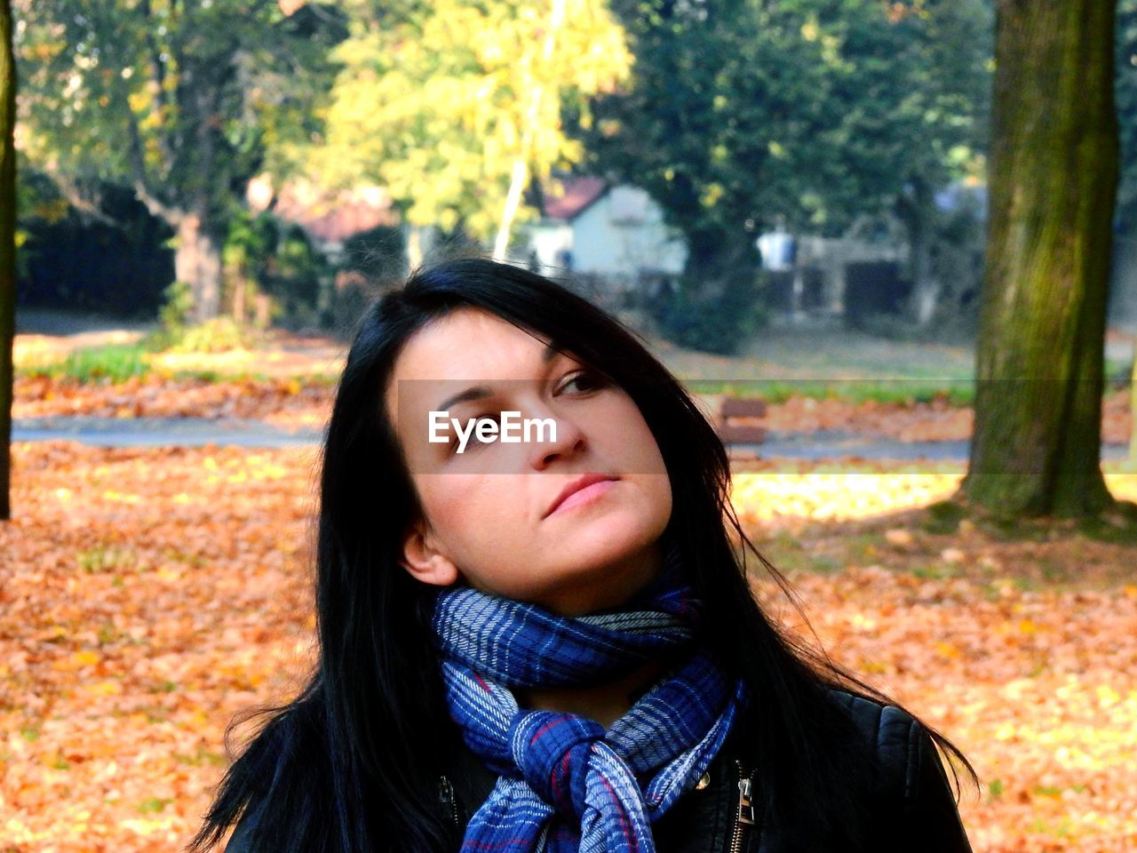 portrait, tree, one person, headshot, young adult, front view, autumn, real people, clothing, lifestyles, young women, focus on foreground, nature, women, plant, looking at camera, long hair, hair, scarf, hairstyle, warm clothing, outdoors, contemplation, beautiful woman, change, human face