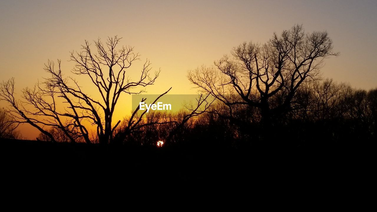 sunset, silhouette, sky, tree, beauty in nature, plant, tranquility, tranquil scene, scenics - nature, orange color, bare tree, no people, nature, environment, landscape, non-urban scene, idyllic, land, outdoors, branch