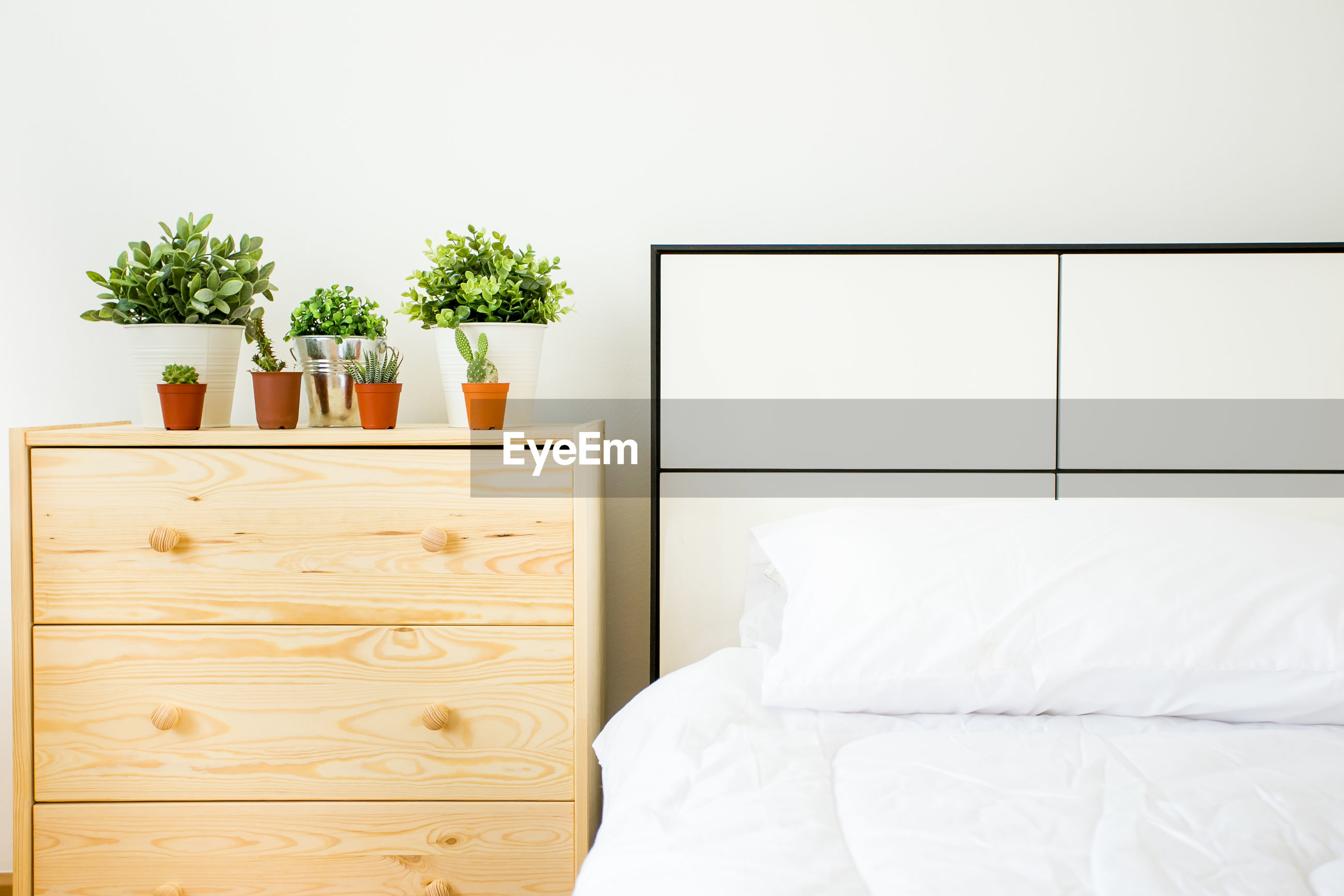Potted plants on nightstand by bed at home