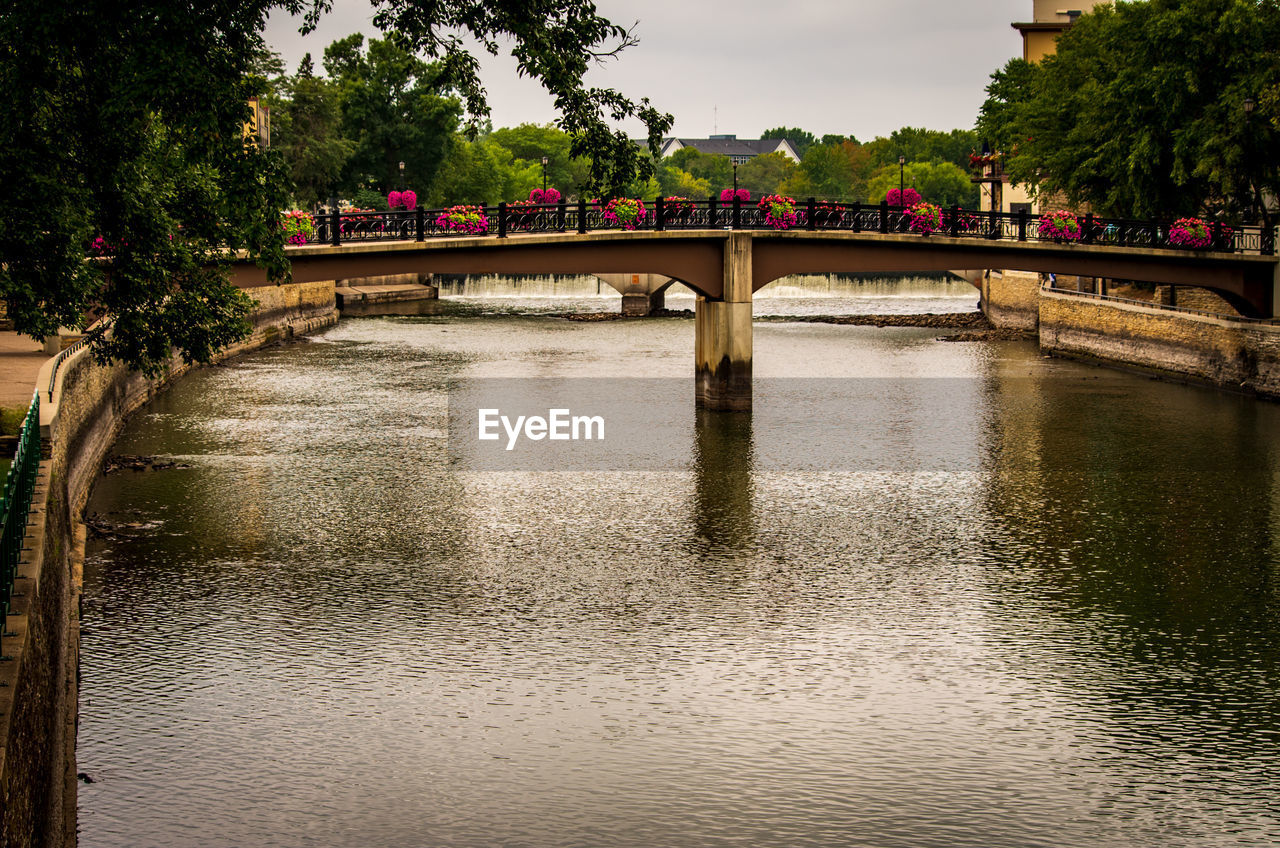 bridge, water, bridge - man made structure, connection, architecture, built structure, plant, river, tree, nature, waterfront, transportation, reflection, sky, arch, arch bridge, outdoors, no people, flowing