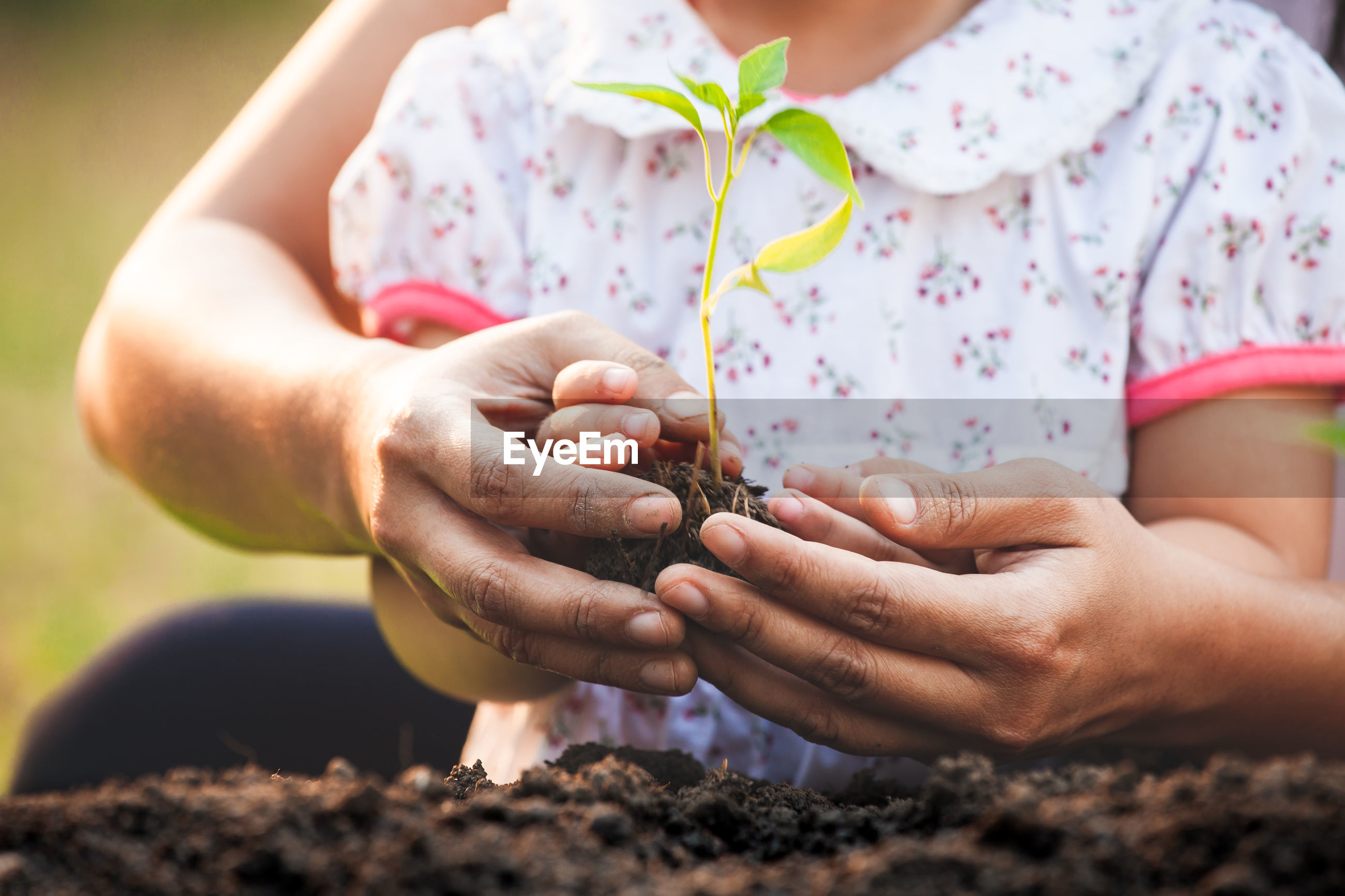 Midsection of mother and girl holding plant in hand outdoors