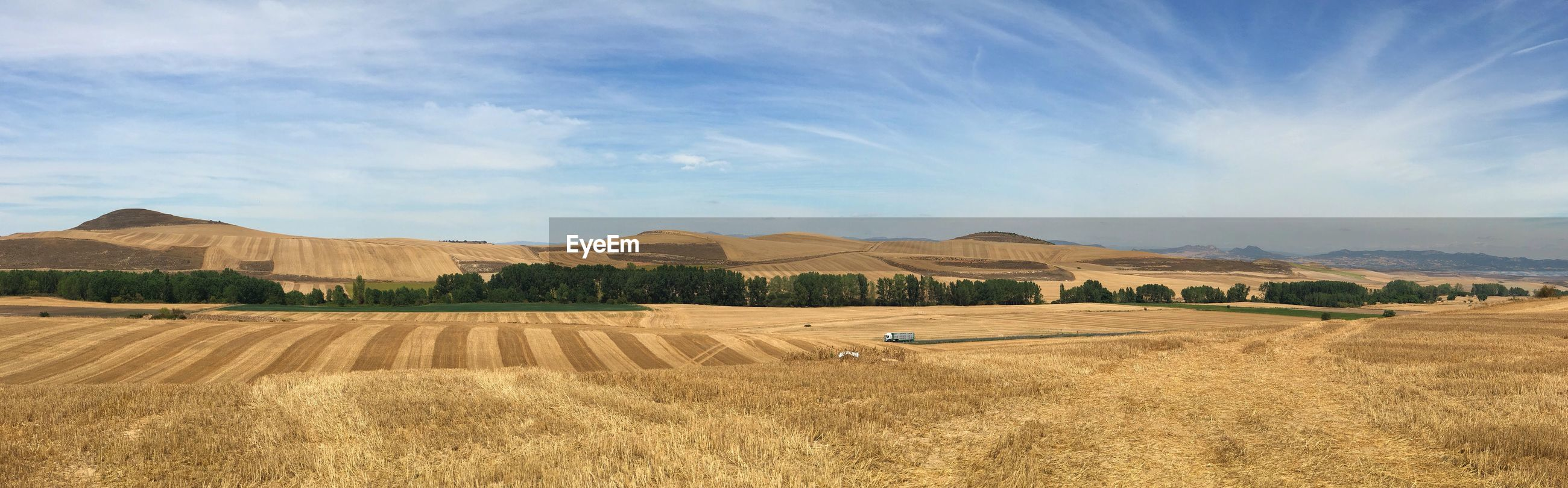 Hiking through the harvest on the camino in spain