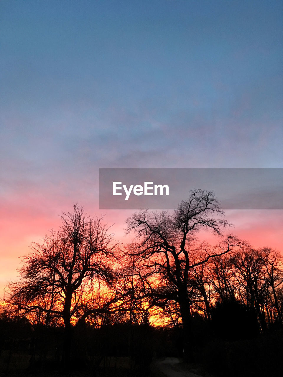 sky, sunset, silhouette, tree, bare tree, orange color, beauty in nature, scenics - nature, plant, cloud - sky, tranquil scene, no people, tranquility, nature, non-urban scene, outdoors, idyllic, dusk, branch, landscape, romantic sky