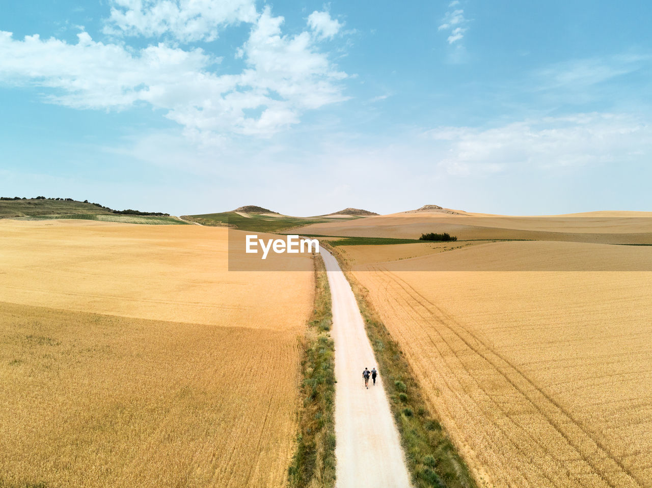 Panoramic view of road amidst field against sky