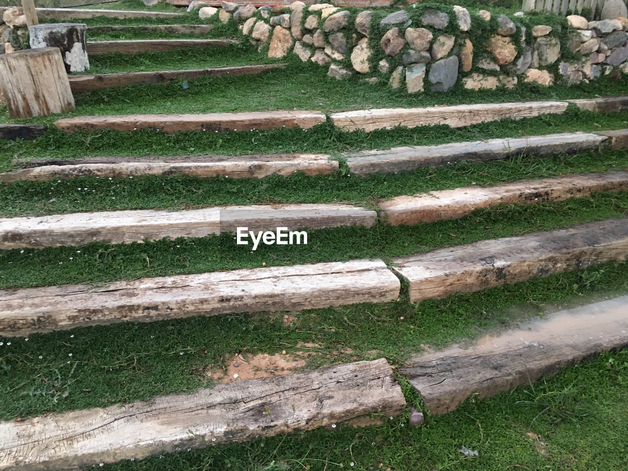 wood - material, day, plant, grass, staircase, no people, nature, land, outdoors, field, architecture, high angle view, steps and staircases, wood, tranquility, in a row, pattern, solid, log, growth