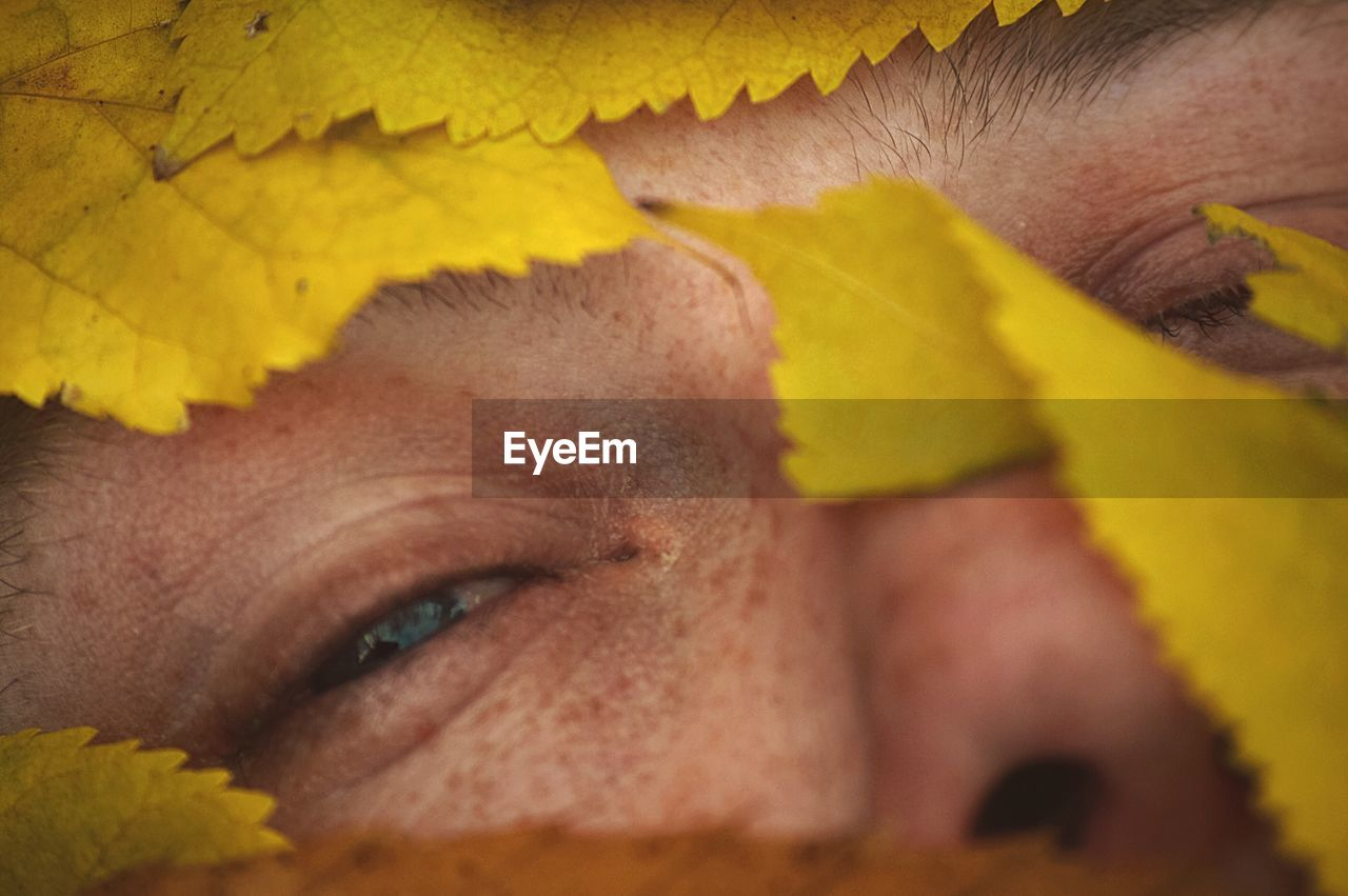 Close-Up Of Human Face In Yellow Leaves
