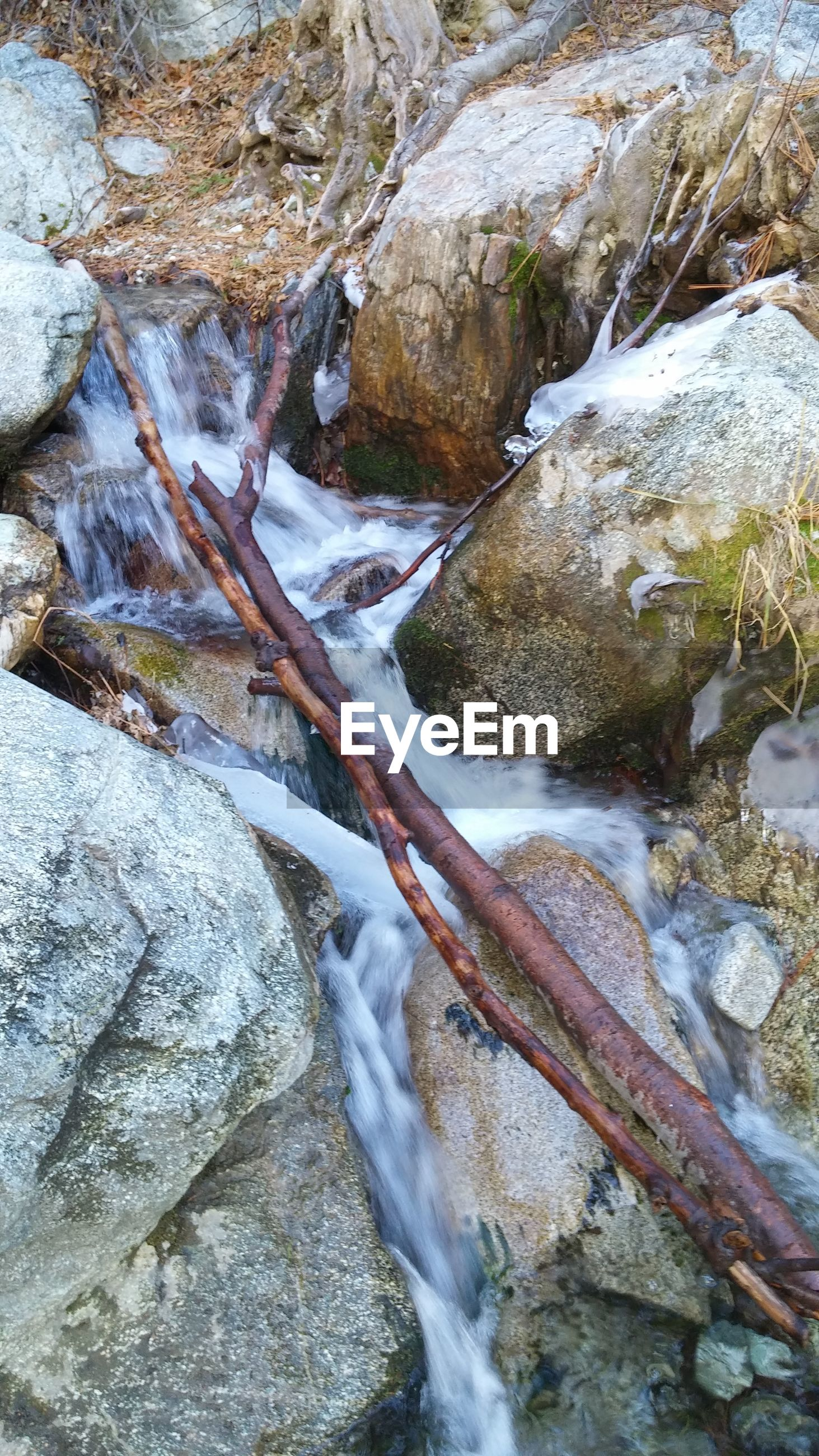 water, flowing water, waterfall, rock - object, flowing, motion, nature, stream, beauty in nature, long exposure, river, surf, high angle view, day, outdoors, rock formation, rock, moss, forest, scenics