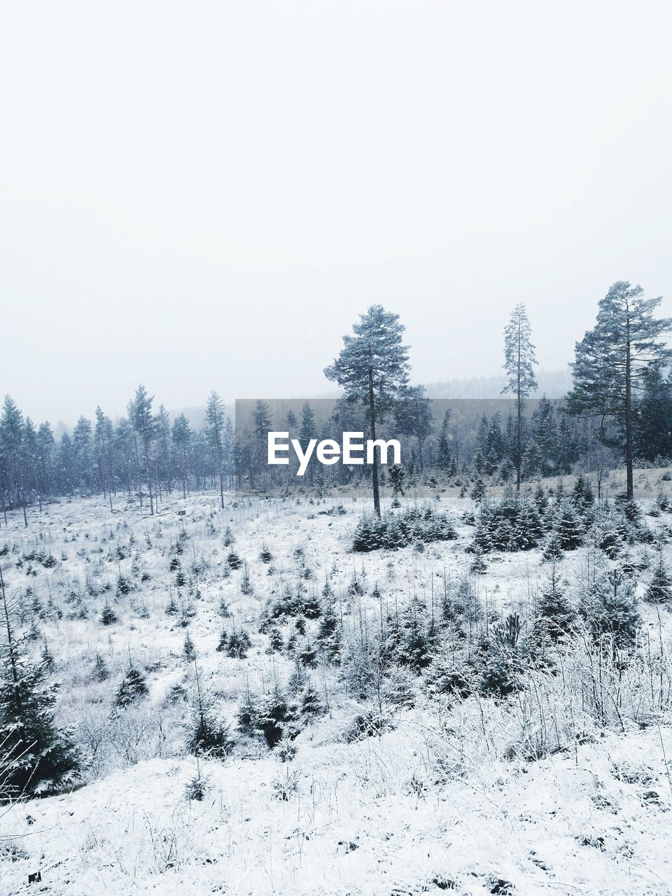 Scenic View Of Snow Against Clear Sky