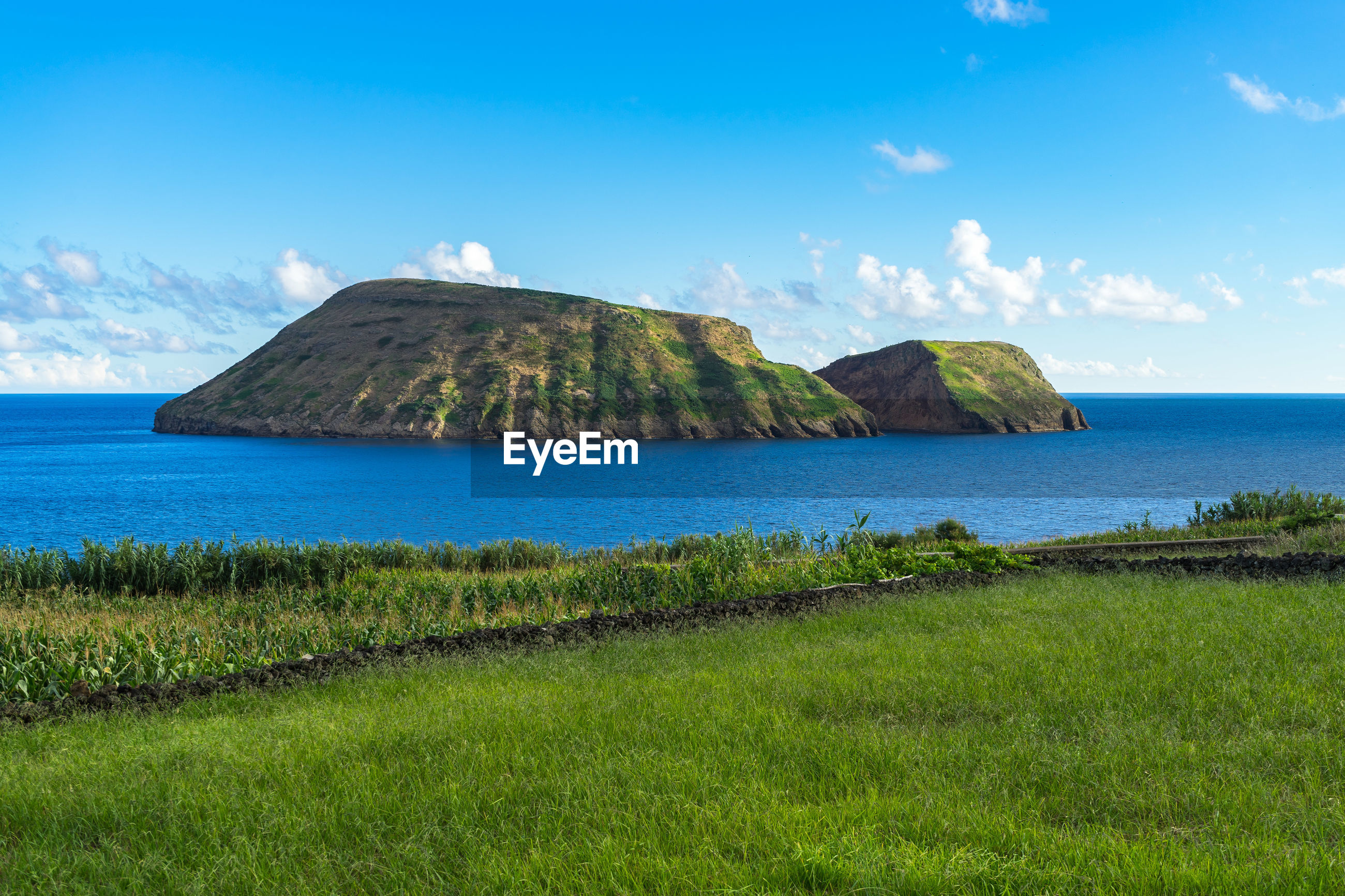 Scenic view of sea and island seen from grassy field