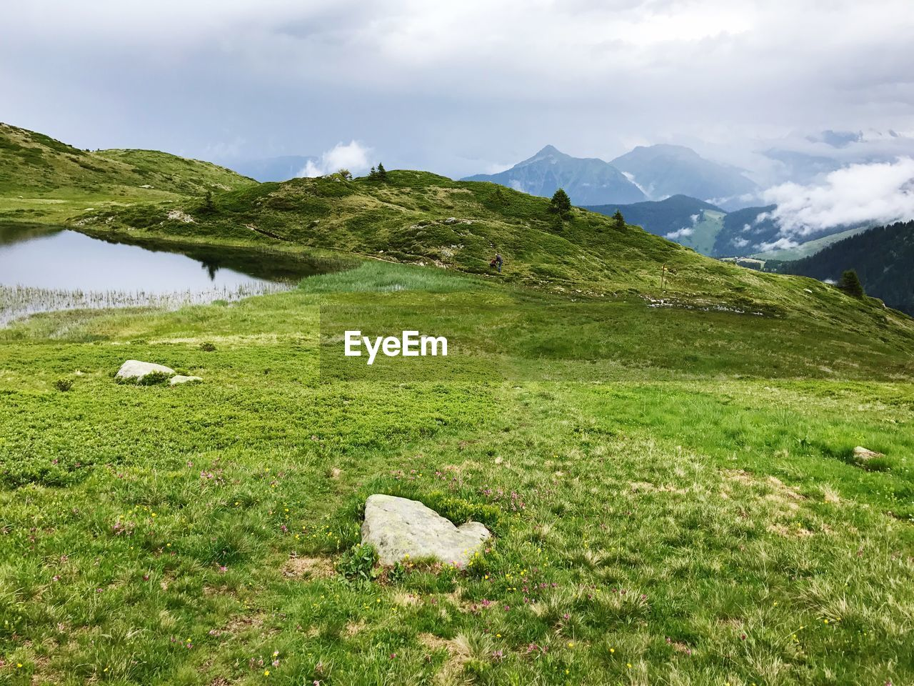 grass, mountain, nature, green color, scenics, tranquil scene, tranquility, beauty in nature, day, green, no people, outdoors, sky, landscape, cloud - sky, mountain range, water