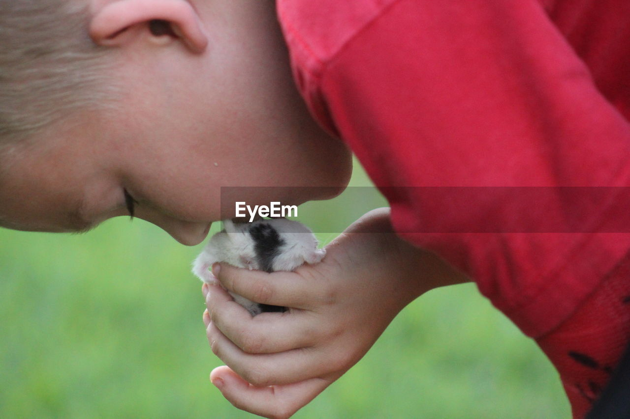 Close-up of boy kissing hamster