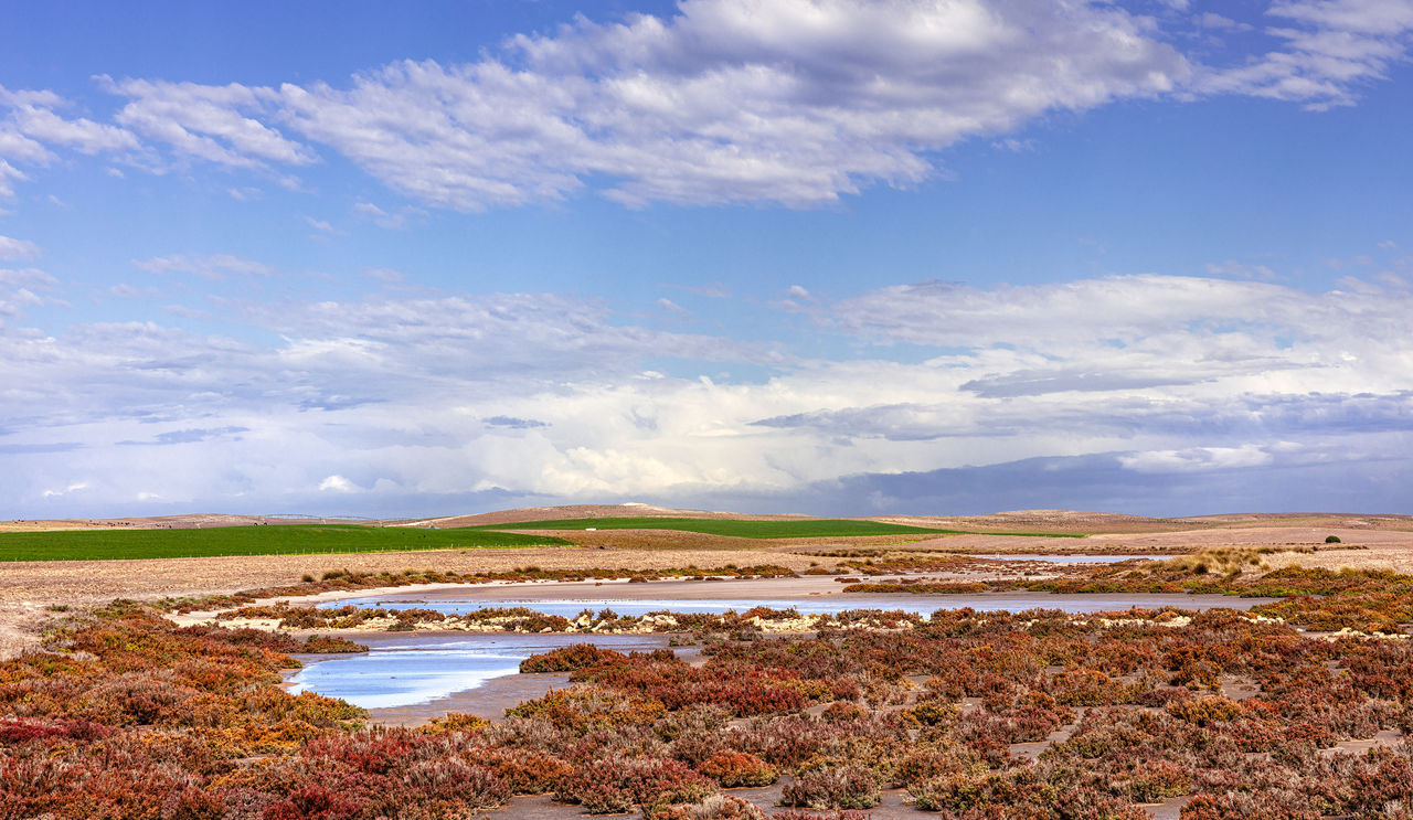 cloud - sky, sky, scenics - nature, tranquil scene, beauty in nature, tranquility, water, environment, land, landscape, non-urban scene, day, nature, no people, field, idyllic, outdoors, mineral, beach, salt flat