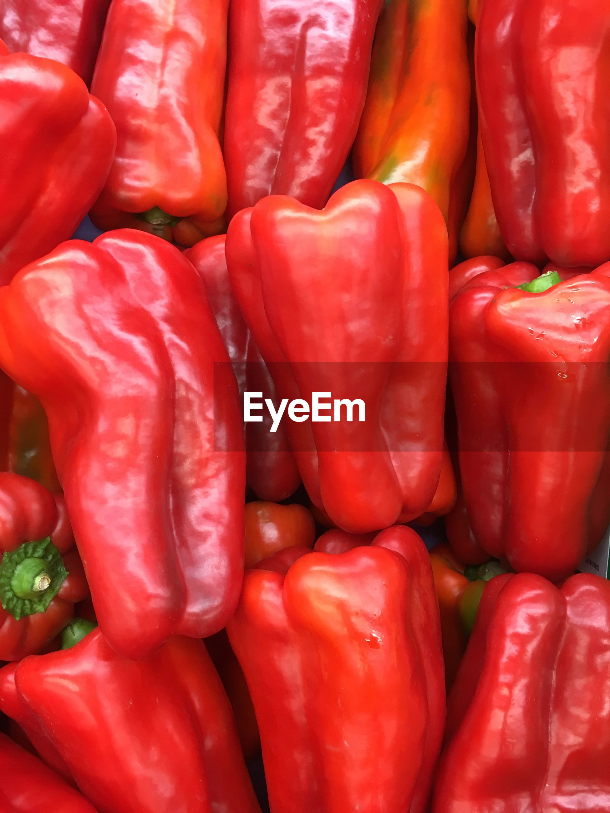 Full frame shot of red bell peppers for sale at market stall