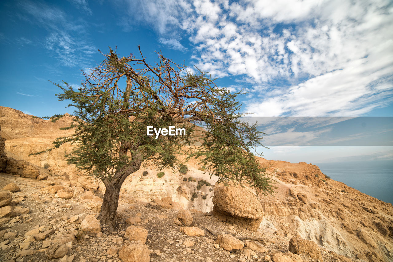 sky, cloud - sky, beauty in nature, scenics - nature, tranquility, tranquil scene, rock, plant, rock - object, tree, solid, non-urban scene, nature, no people, rock formation, day, low angle view, mountain, land, remote, outdoors, arid climate, climate, eroded, formation