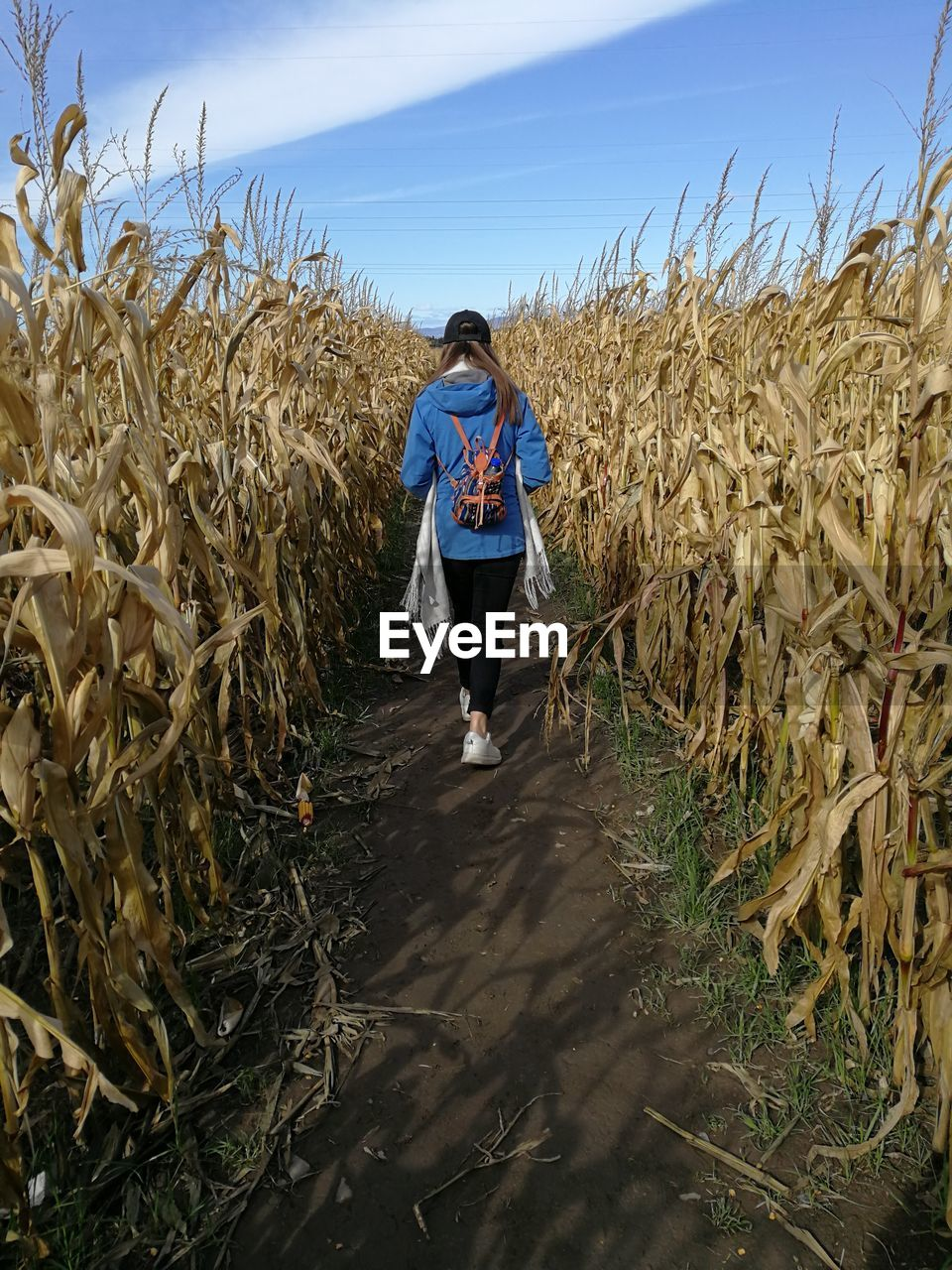 plant, agriculture, land, rural scene, farm, real people, growth, nature, sky, one person, field, landscape, full length, cereal plant, crop, lifestyles, walking, standing, day, leisure activity, outdoors, farmer