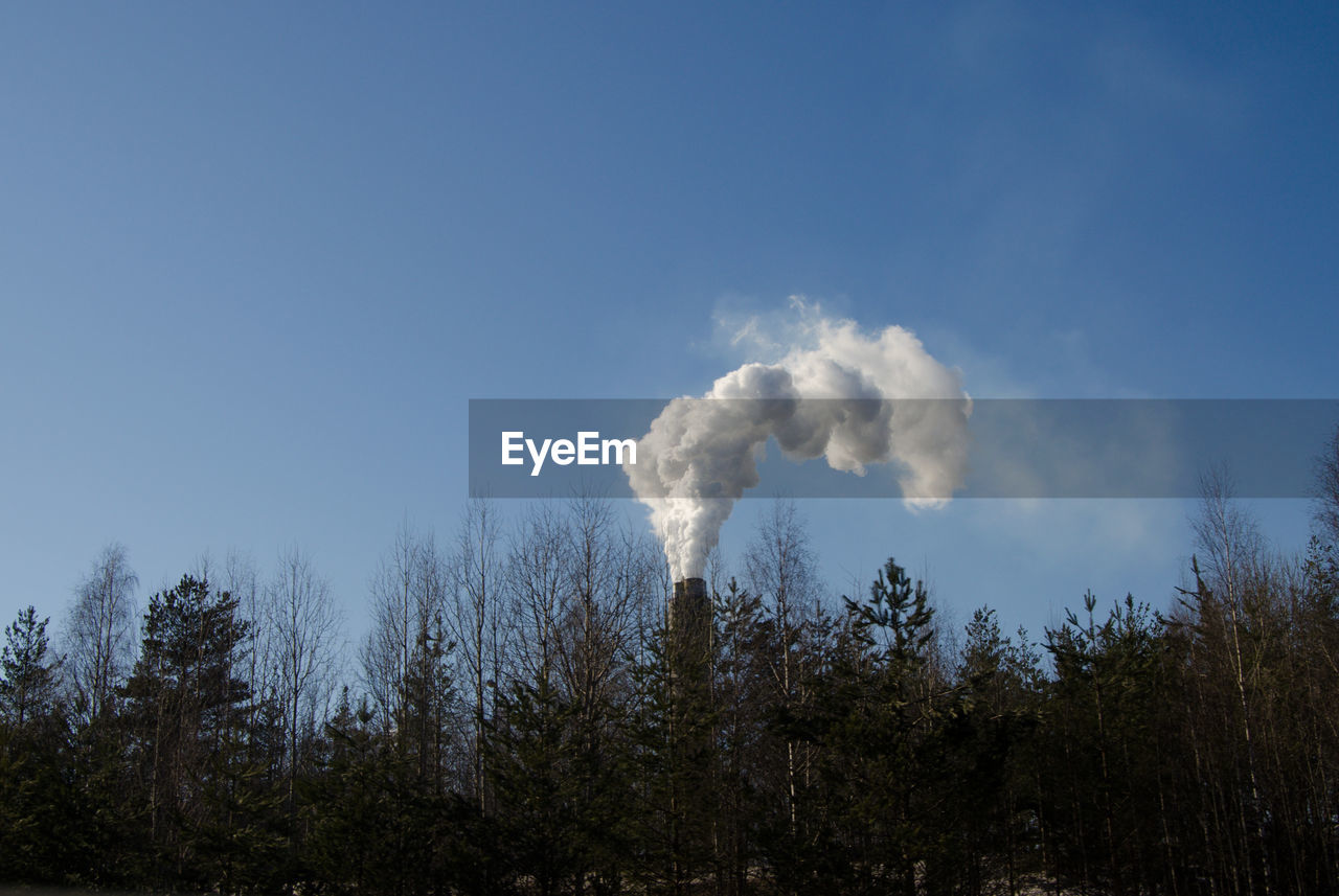 tree, plant, sky, smoke - physical structure, low angle view, copy space, nature, forest, day, no people, emitting, land, blue, environment, clear sky, pollution, beauty in nature, air pollution, outdoors