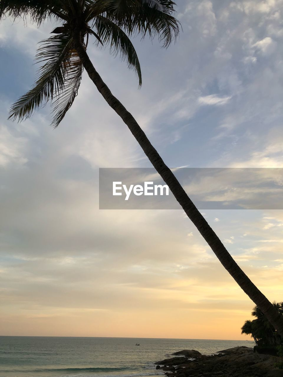 sky, cloud - sky, water, sea, palm tree, beauty in nature, scenics - nature, horizon over water, horizon, tree, sunset, tranquil scene, nature, tropical climate, tranquility, beach, land, no people, plant, outdoors, coconut palm tree, palm leaf