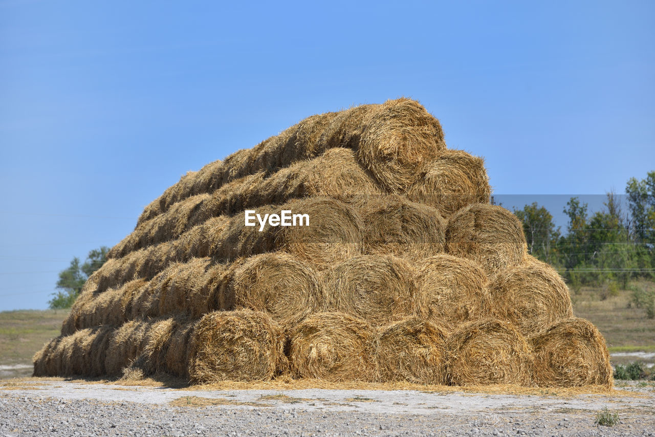 sky, nature, hay, land, clear sky, no people, day, plant, blue, bale, tranquility, sunlight, field, tranquil scene, landscape, farm, copy space, beauty in nature, haystack, outdoors