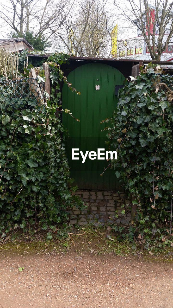 Closed Door Amidst Plants