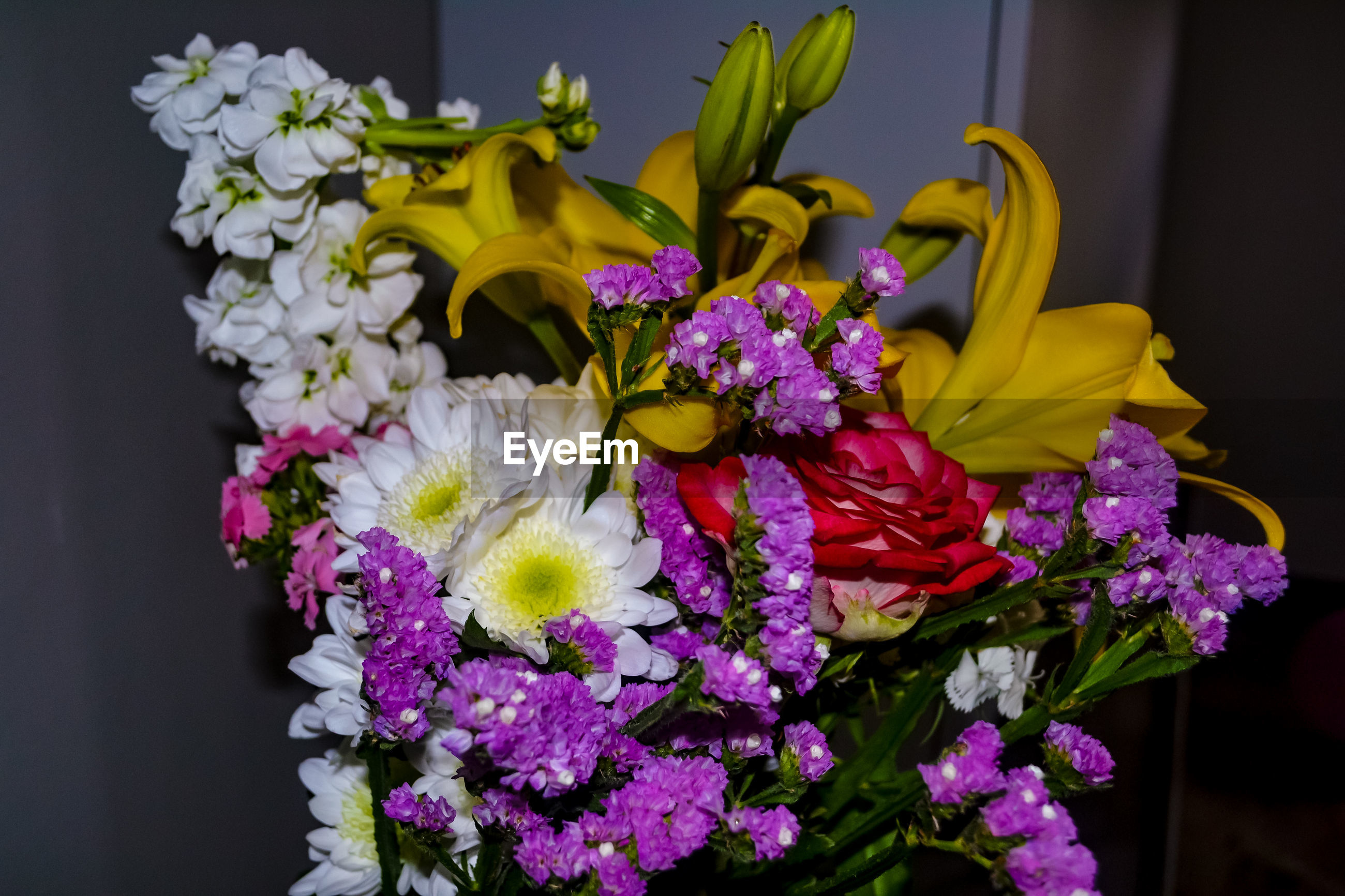 CLOSE-UP OF BOUQUET OF PURPLE FLOWER