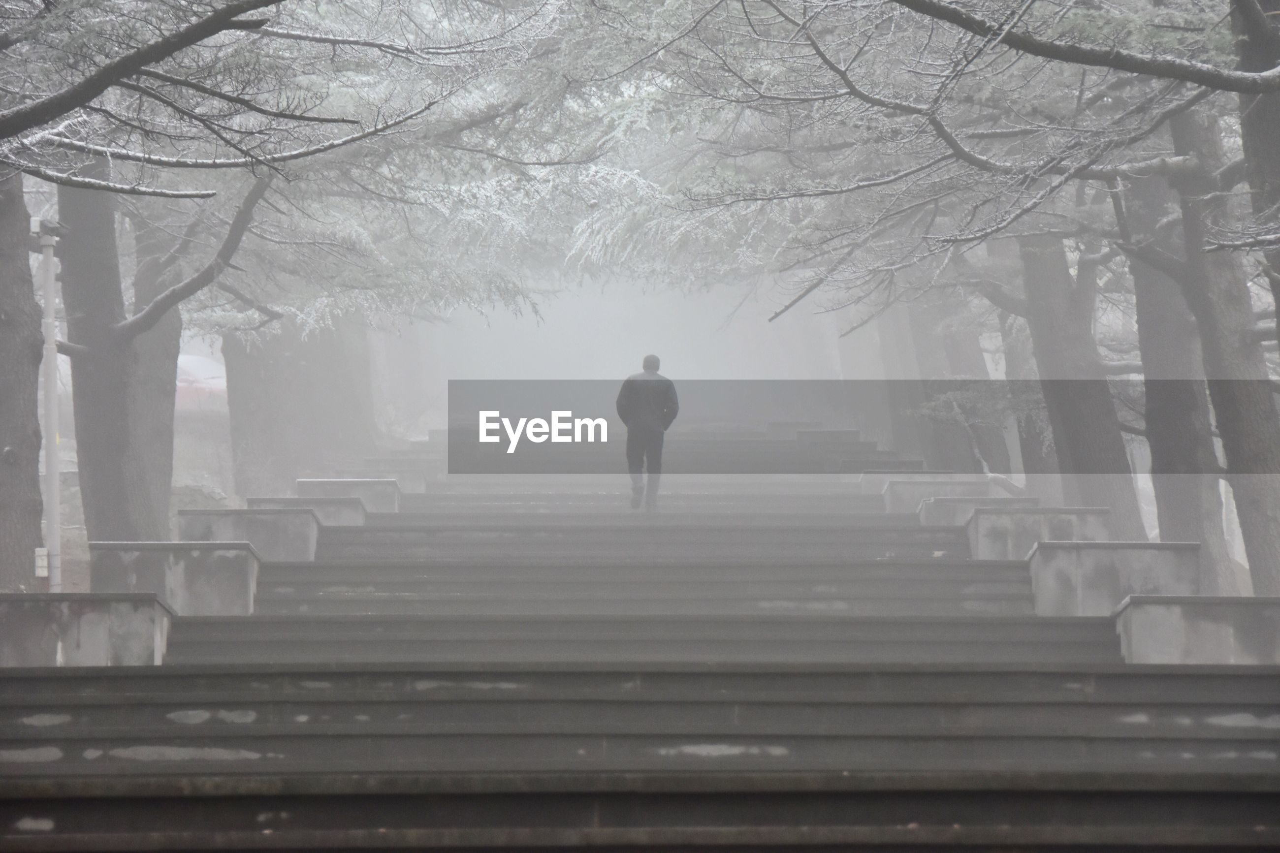 Rear view of man walking on steps in foggy weather