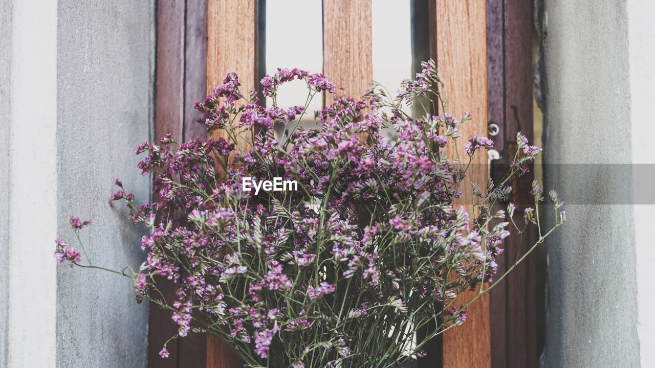 flower, flowering plant, plant, vulnerability, fragility, freshness, growth, day, nature, beauty in nature, architecture, no people, window, built structure, pink color, building exterior, close-up, purple, outdoors, wall - building feature, flower head, flower pot, flower arrangement, window box