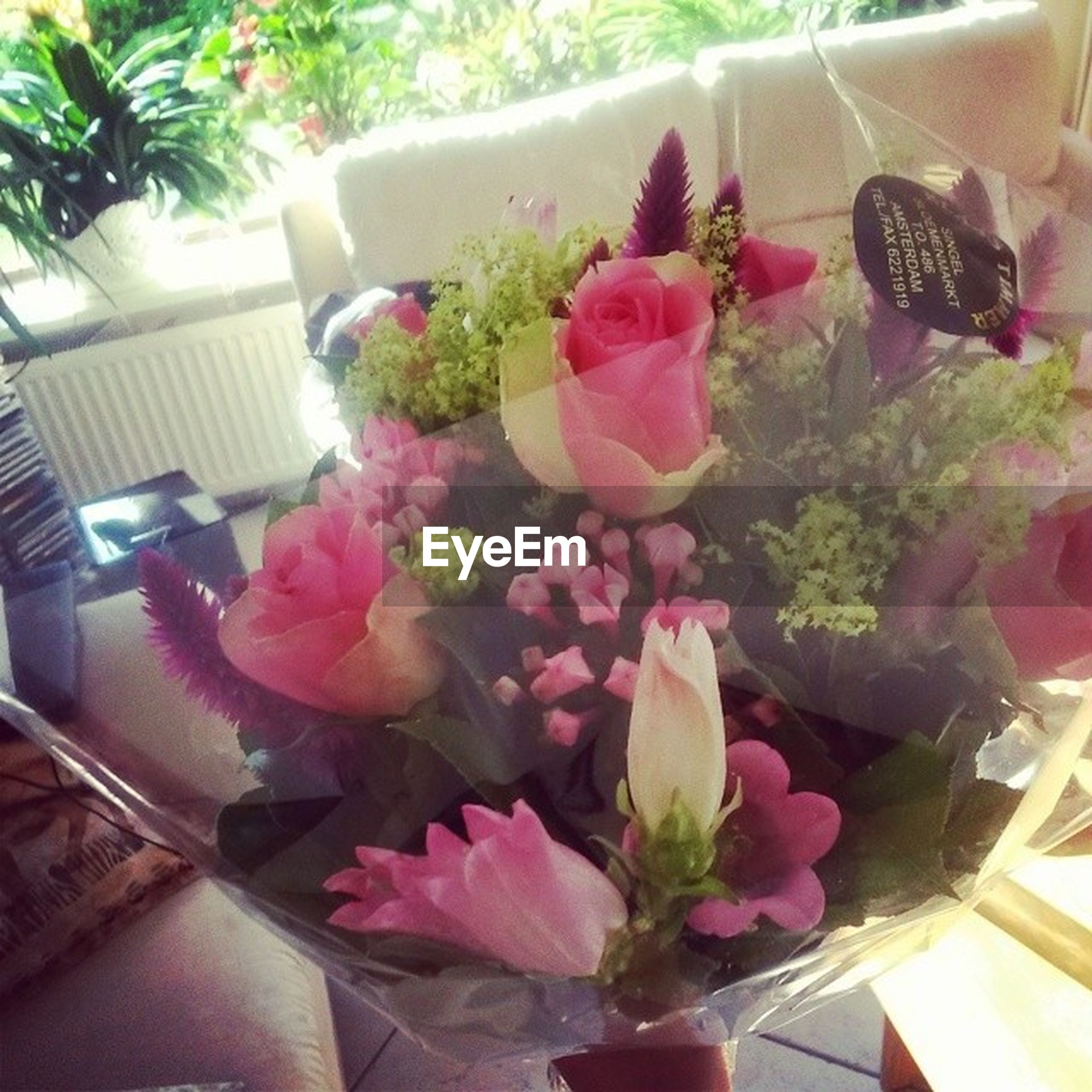 indoors, flower, freshness, potted plant, high angle view, plant, table, vase, bouquet, growth, home interior, decoration, window, pink color, no people, variation, flower pot, rose - flower, day, fragility