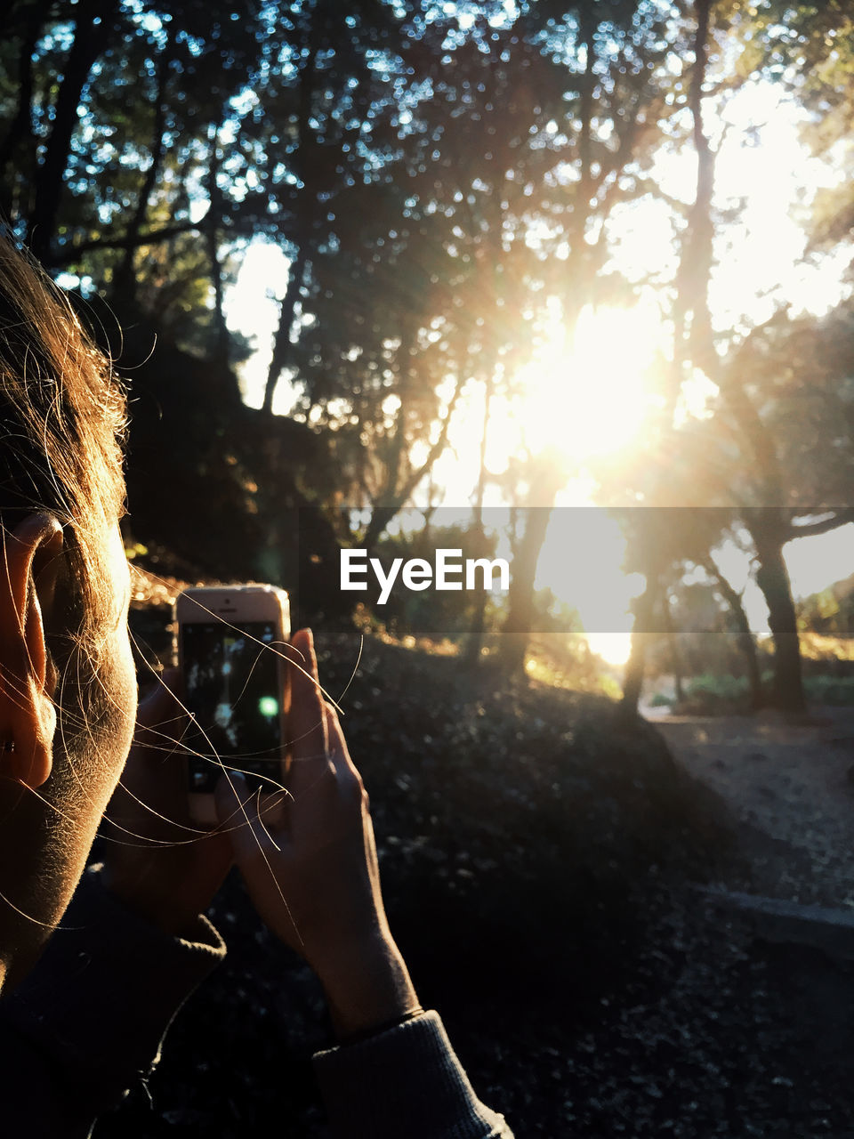 technology, photography themes, wireless technology, one person, activity, tree, real people, photographing, nature, communication, plant, mobile phone, leisure activity, lifestyles, holding, smart phone, portable information device, sunlight, lens flare, outdoors