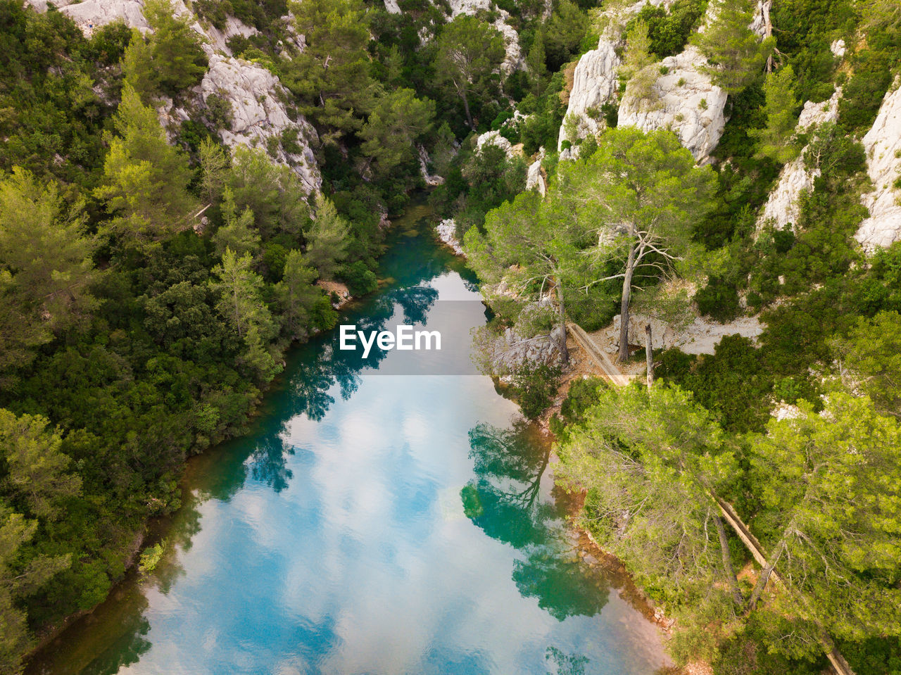 water, tree, plant, scenics - nature, high angle view, nature, beauty in nature, no people, day, tranquil scene, tranquility, outdoors, non-urban scene, sea, land, reflection, idyllic, green color