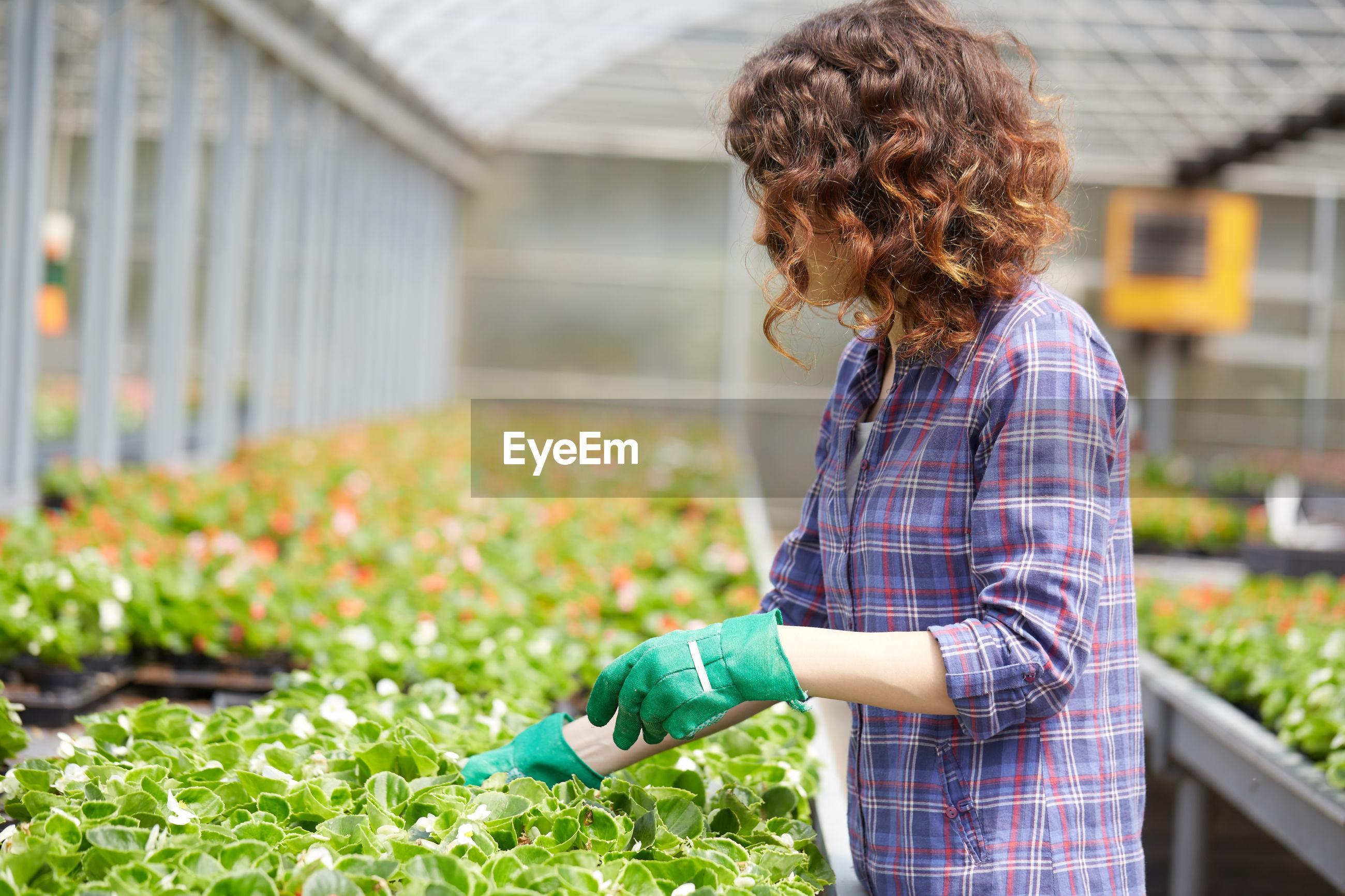 Florist working in garden